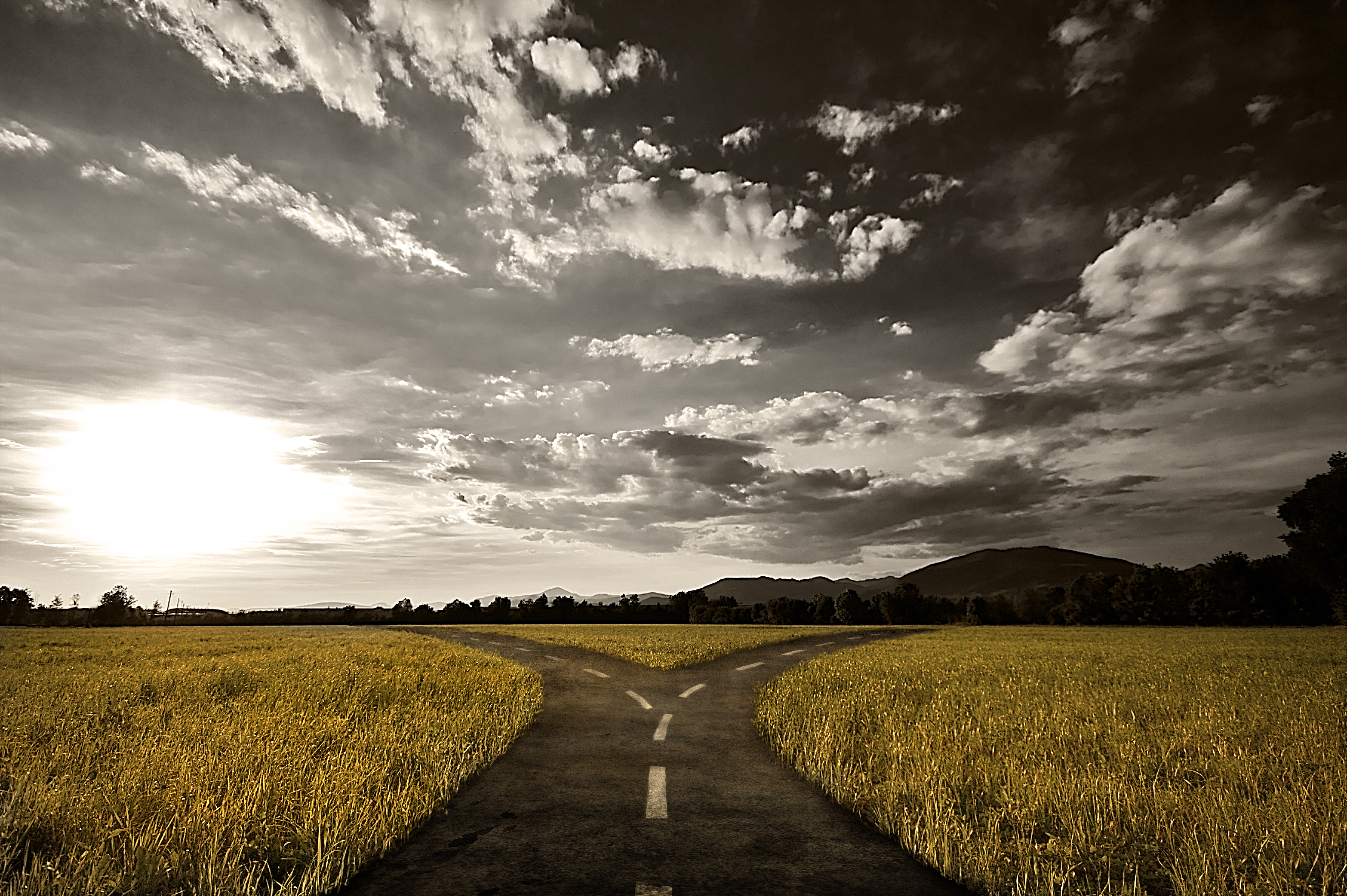 The Path of Pressure in College Choices | CollegeVine Zen