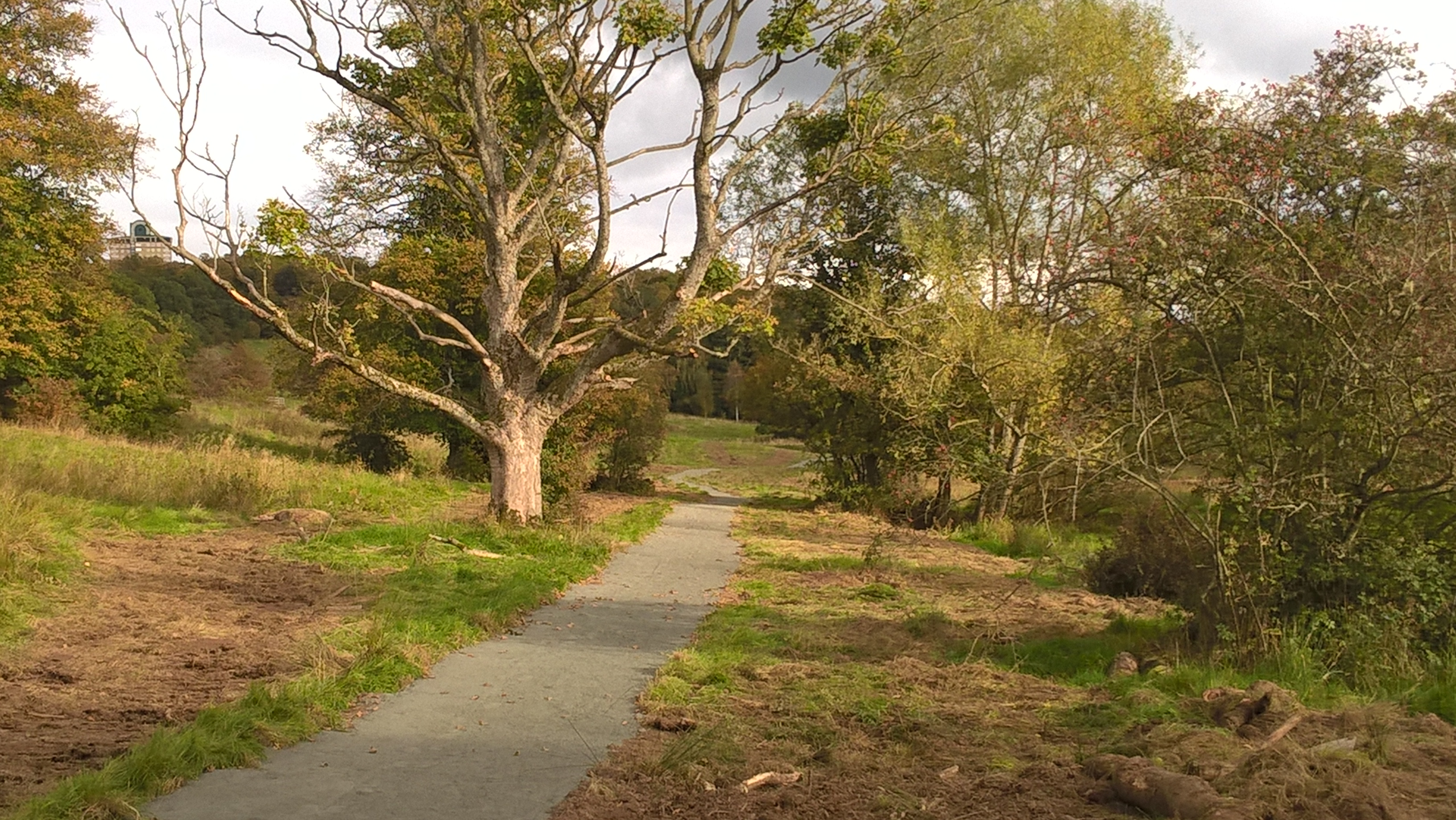 New path at RSPB Scotland Baron's Haugh replaces section of Clyde ...