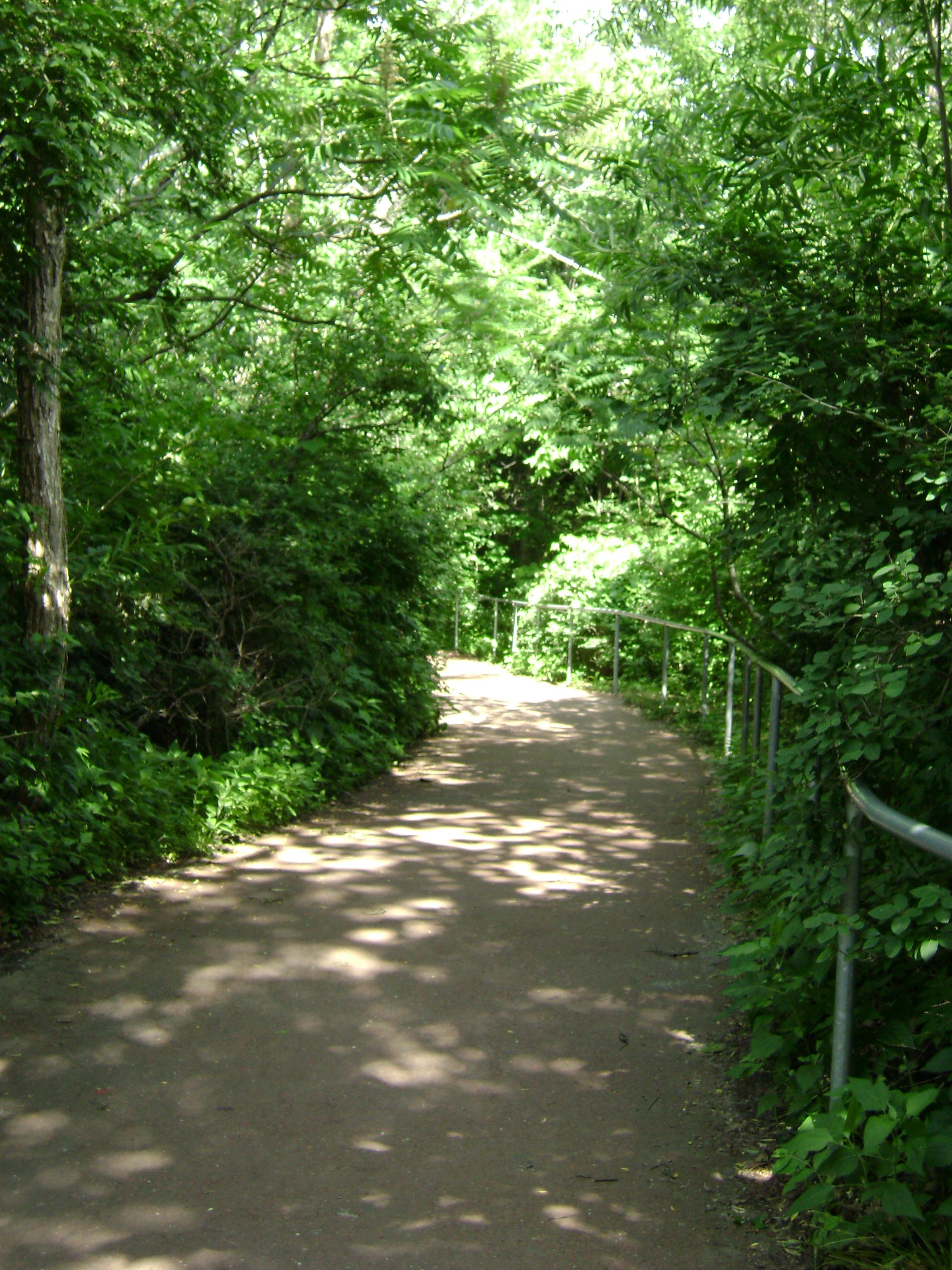 Path through the woods, Nature, Parks, Paths, Plants, HQ Photo