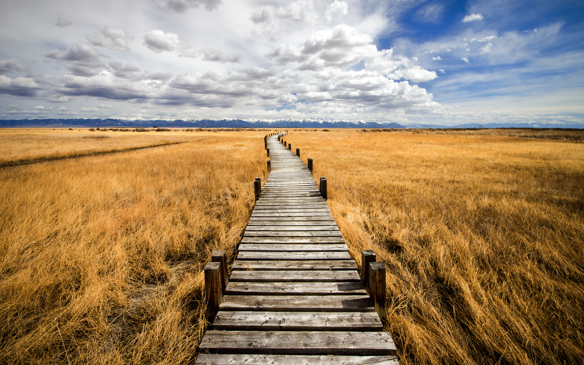 The Path to Nowhere widescreen wallpaper   Wide-Wallpapers.NET