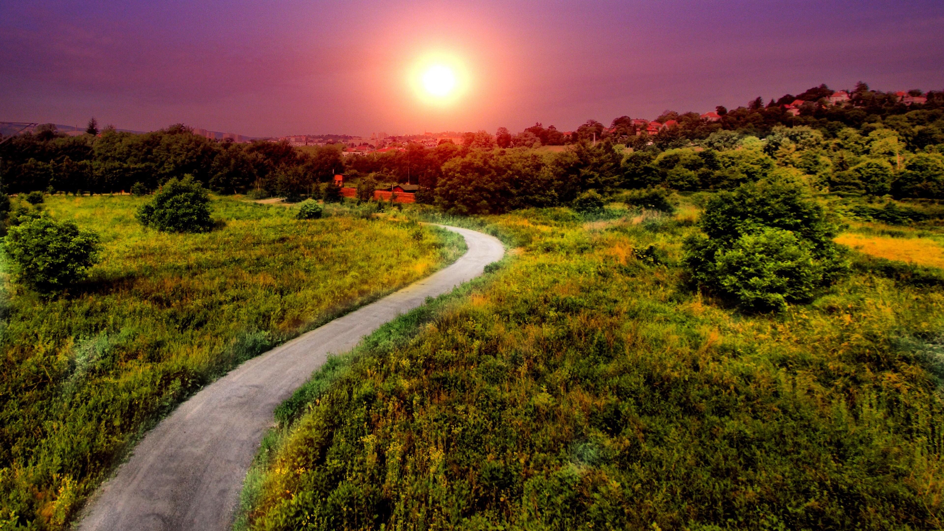 Wallpaper Pathway, Bright sun, Summer, HD, Nature, #2654