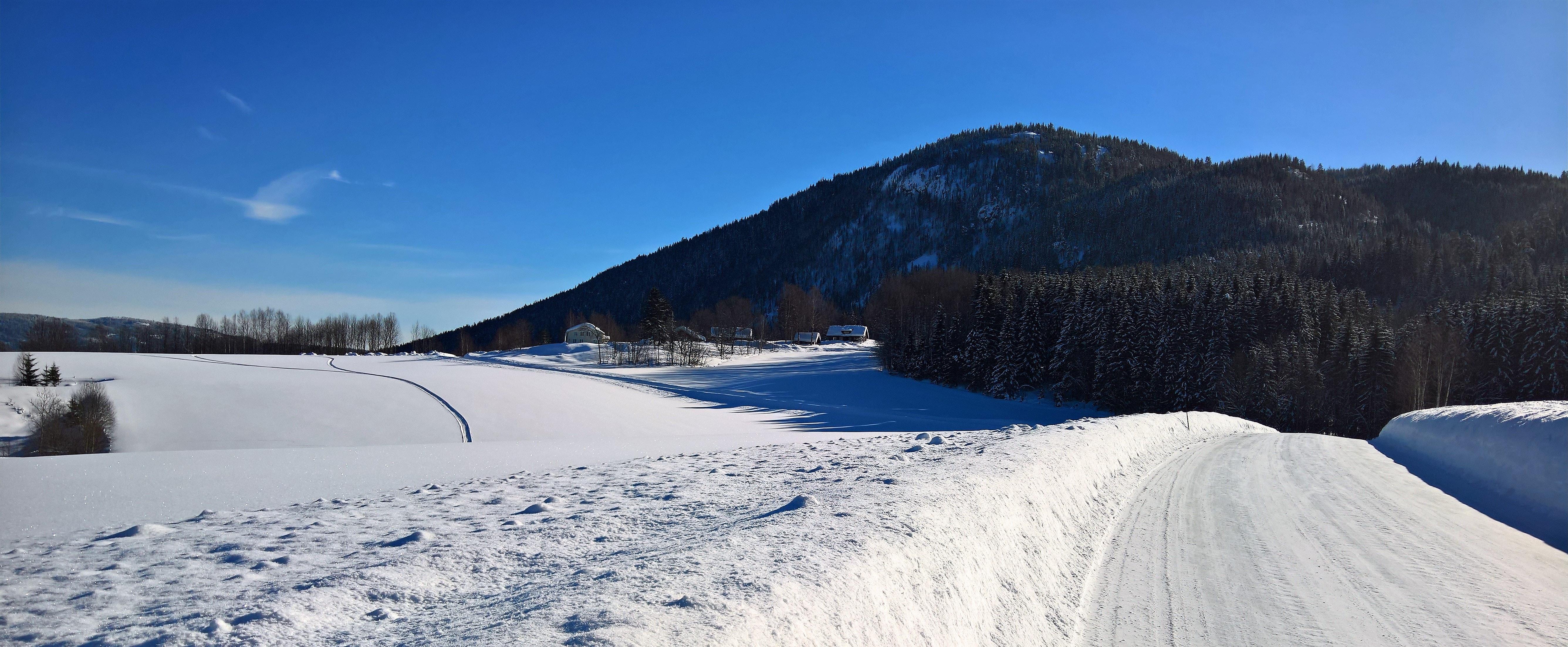 Pathway near mountain photo