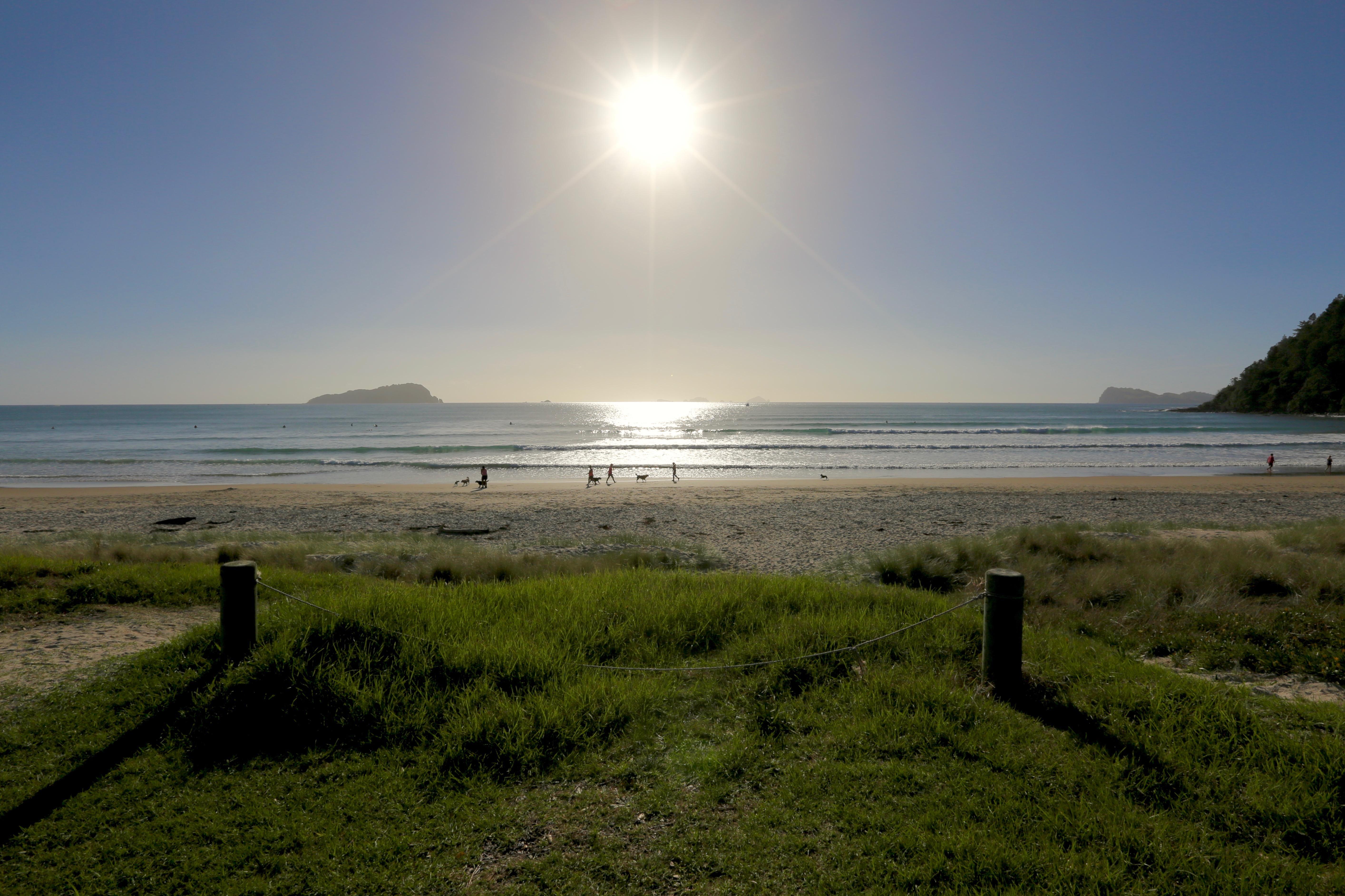 Pauauni beach coromandel photo