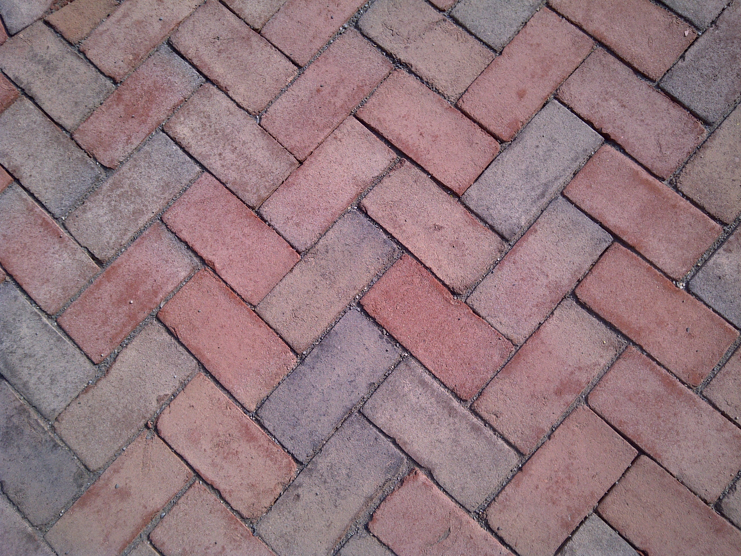 Pavement bricks photo