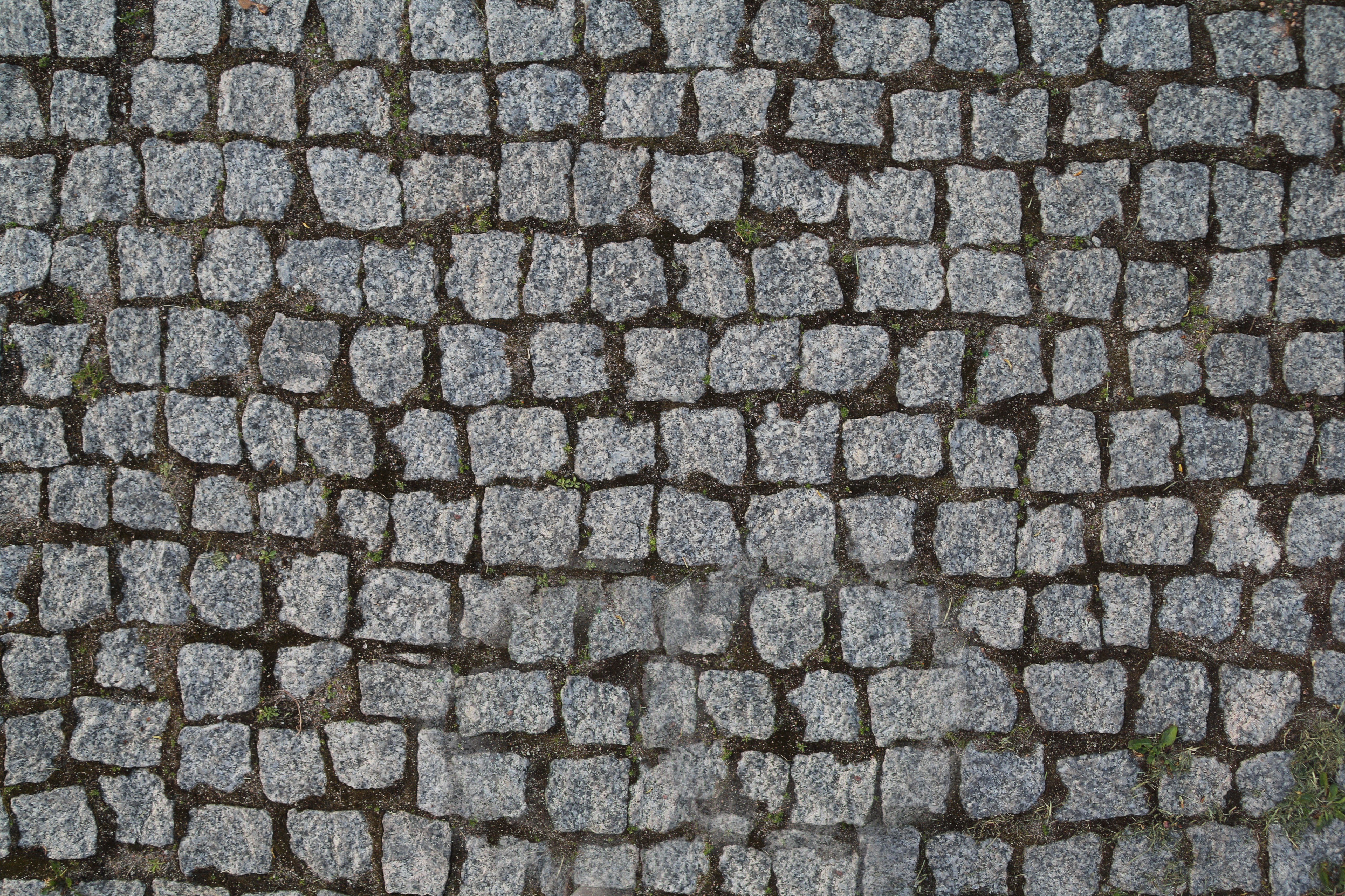 Stone pavement texture photo