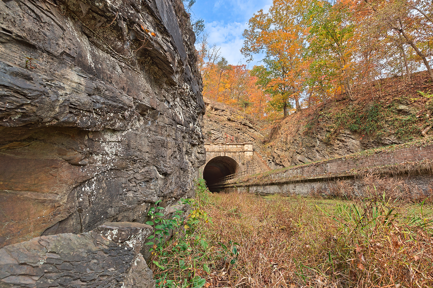 Paw paw fall tunnel - hdr photo