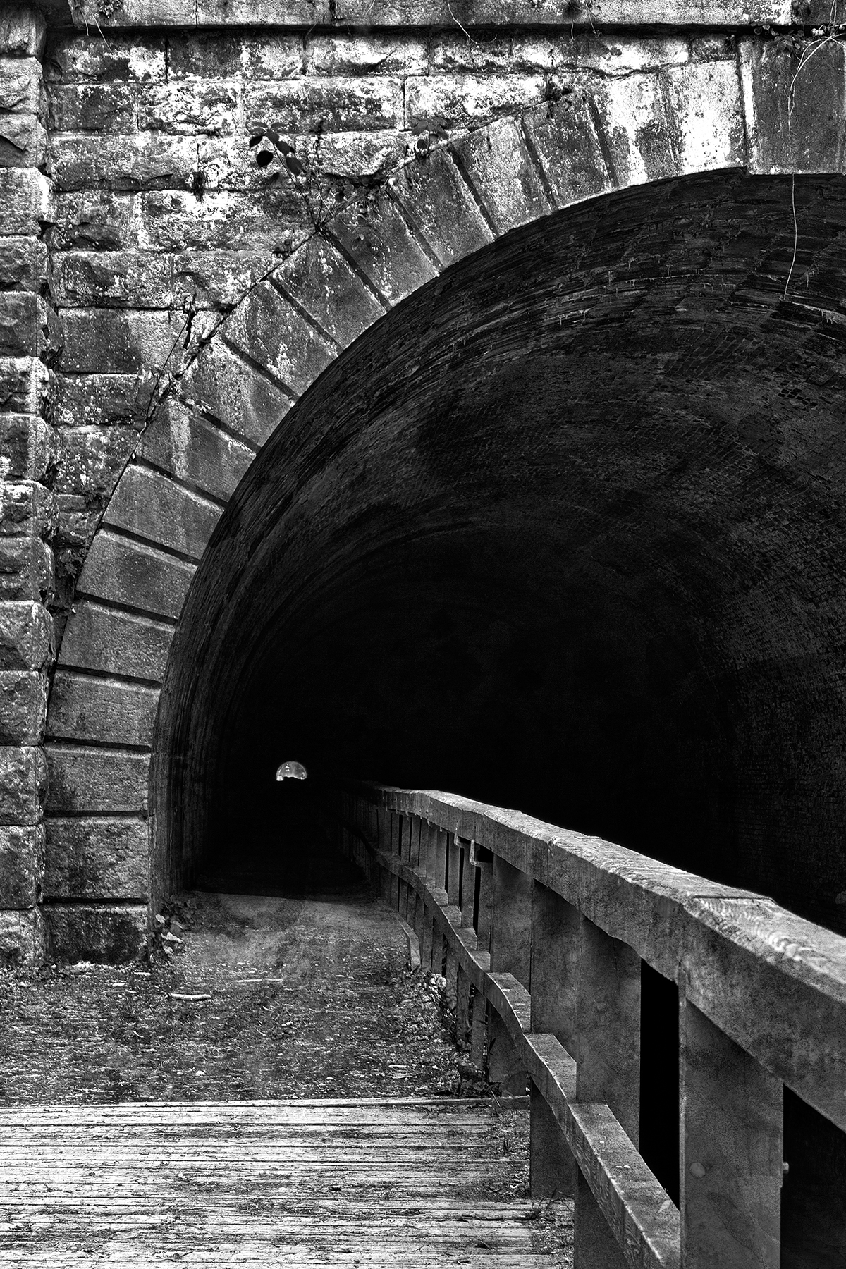 Paw paw tunnel - black & white hdr photo