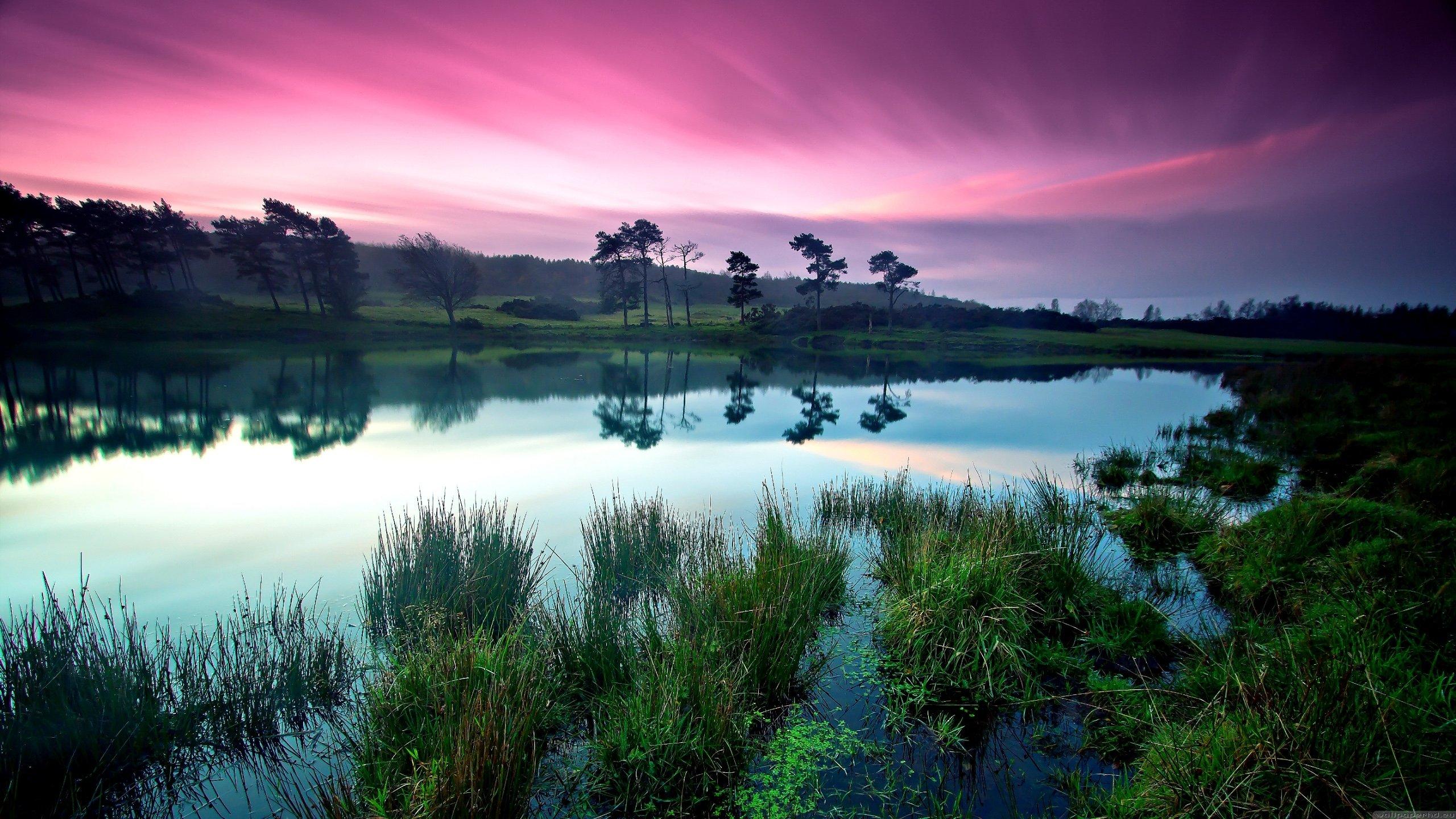 Peaceful Nature 871234 - WallDevil