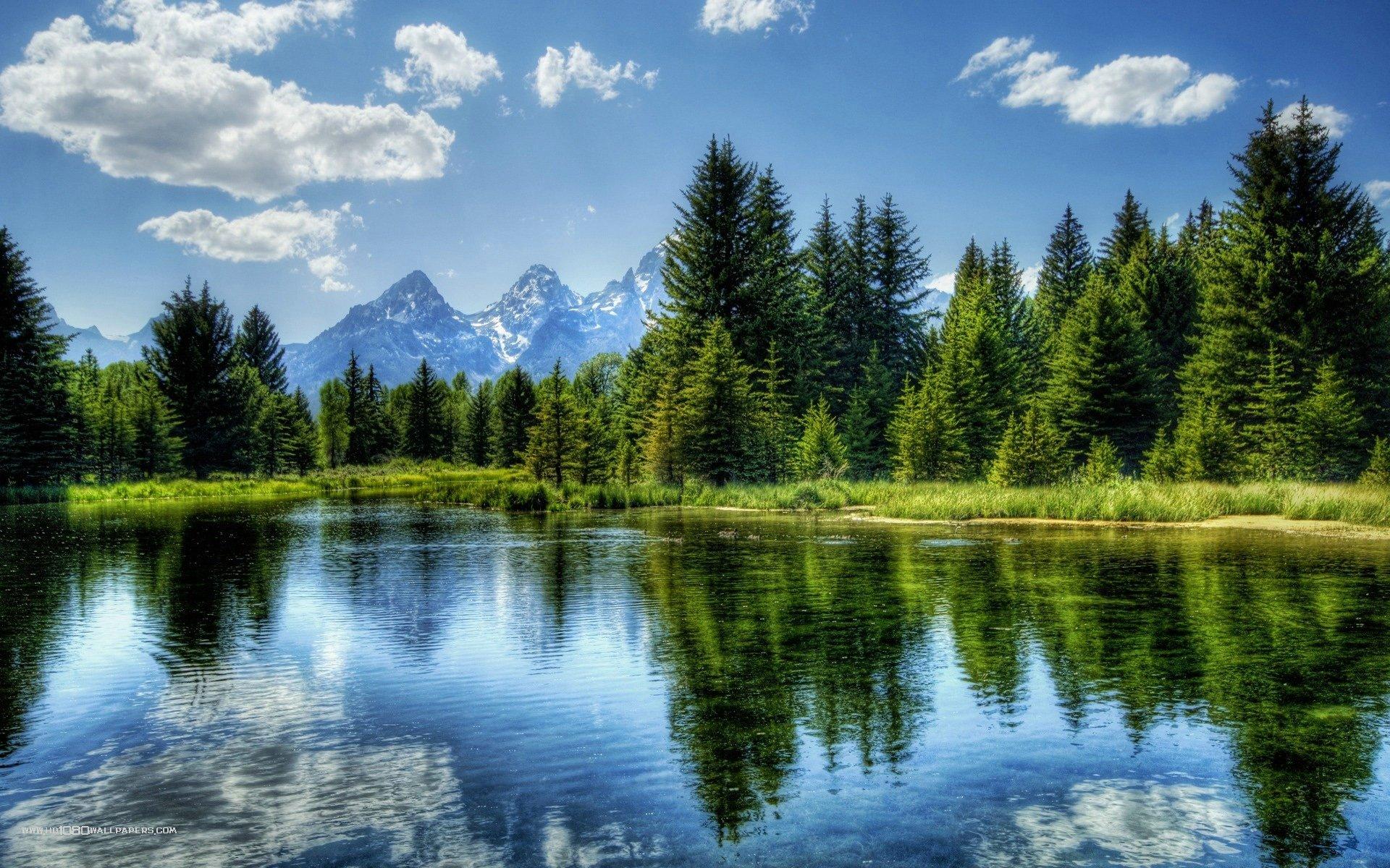 Peaceful Nature 651226 - WallDevil
