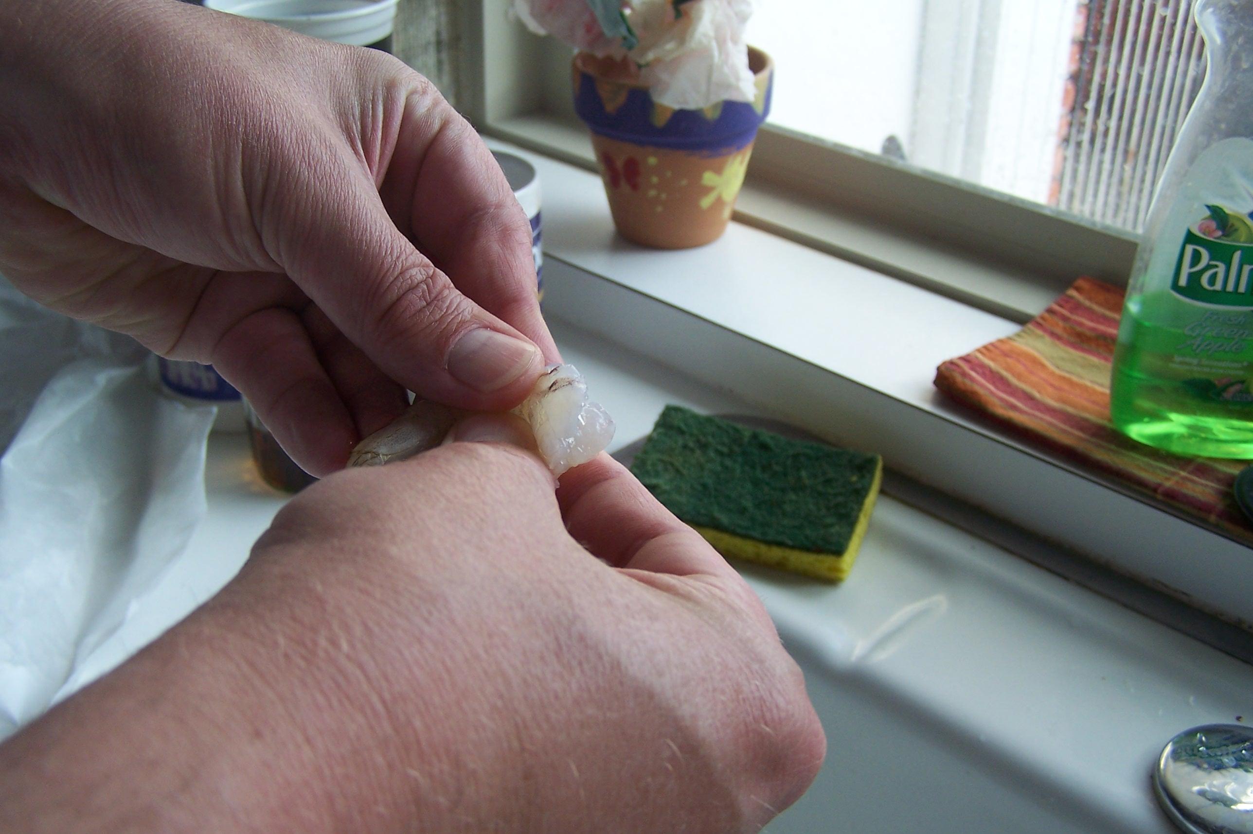 Peeling Shrimp, Food, Hand, Peeling, Prep, HQ Photo