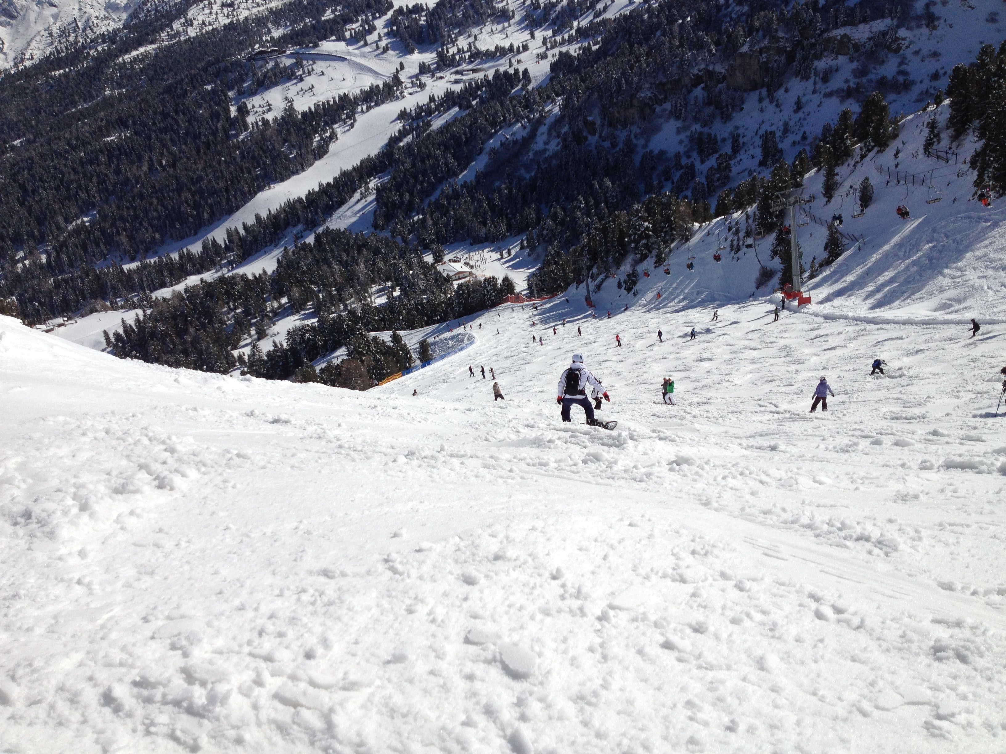 People on snow near in green trees photo