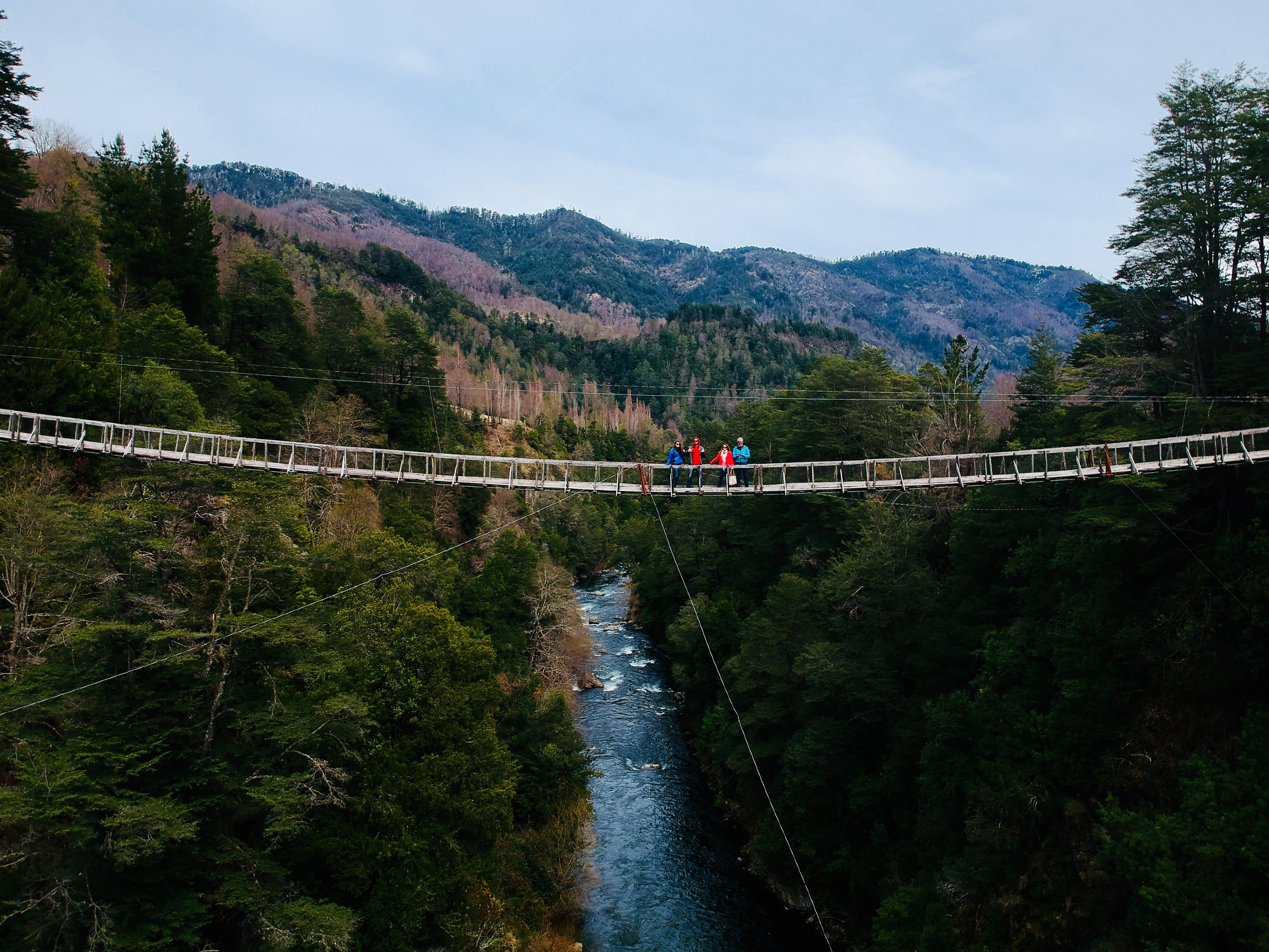 People standing on bridge photo