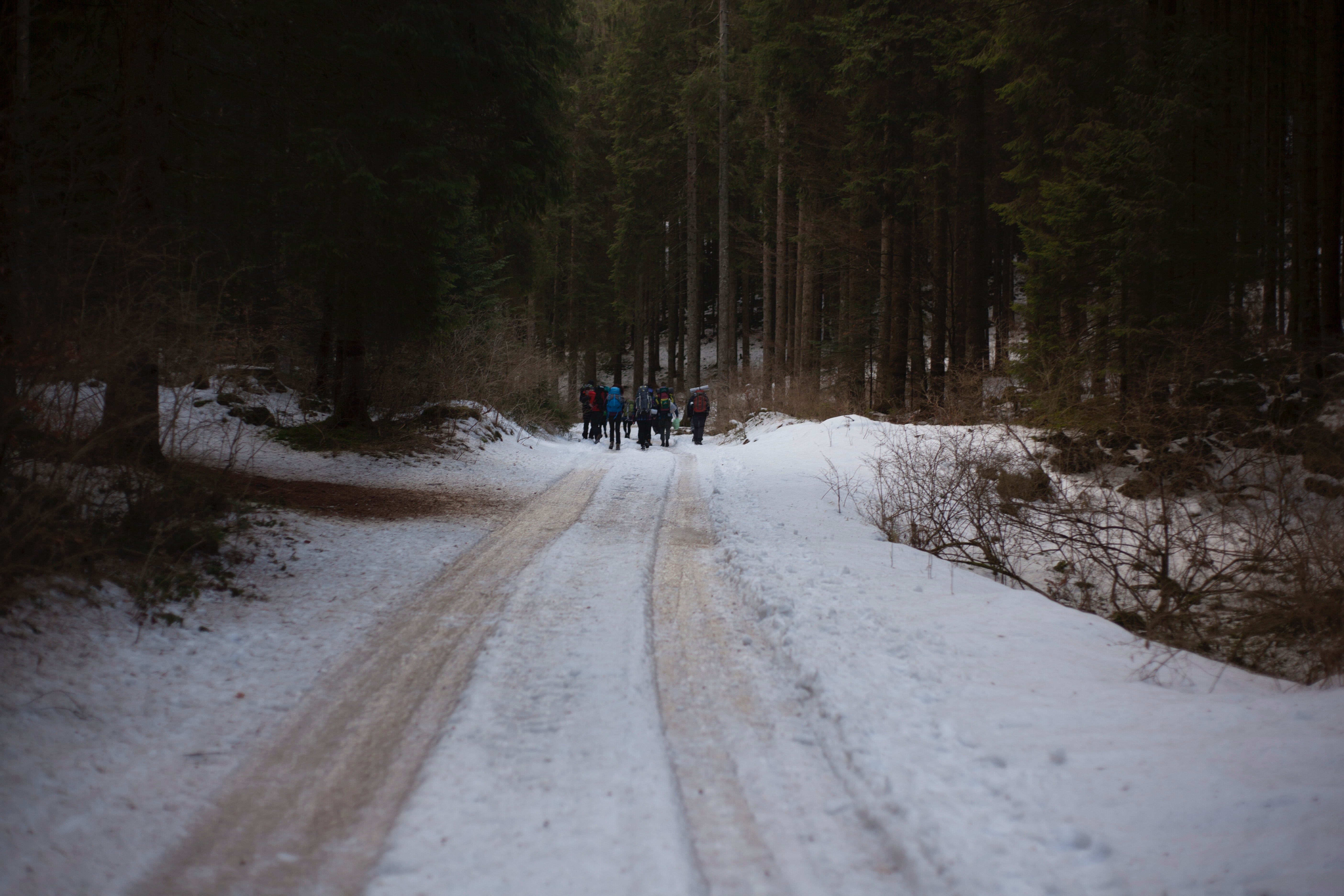 People walking on icy road photo