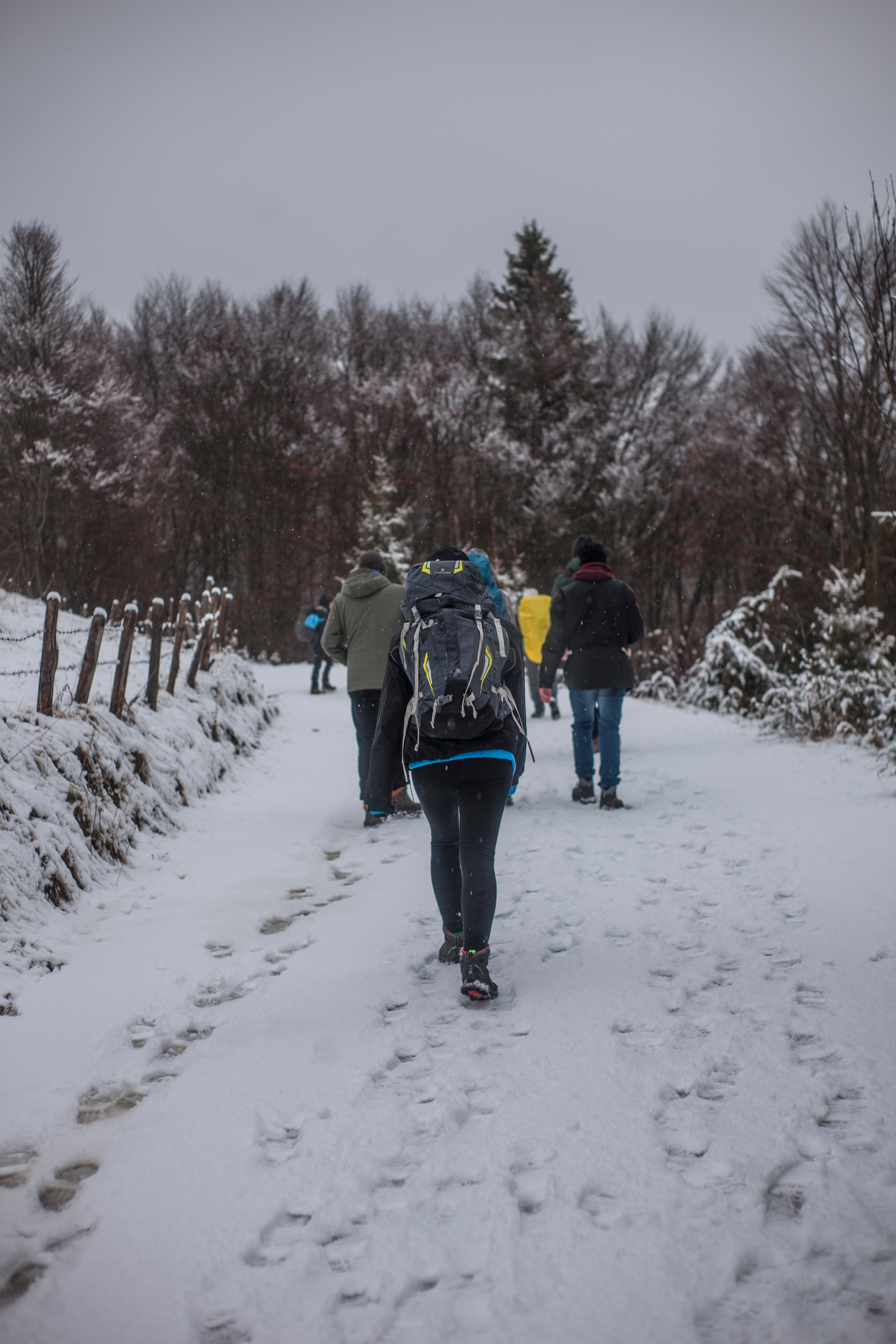 Person Wearing Green Jacket Walking on White Snow Covered Mountain