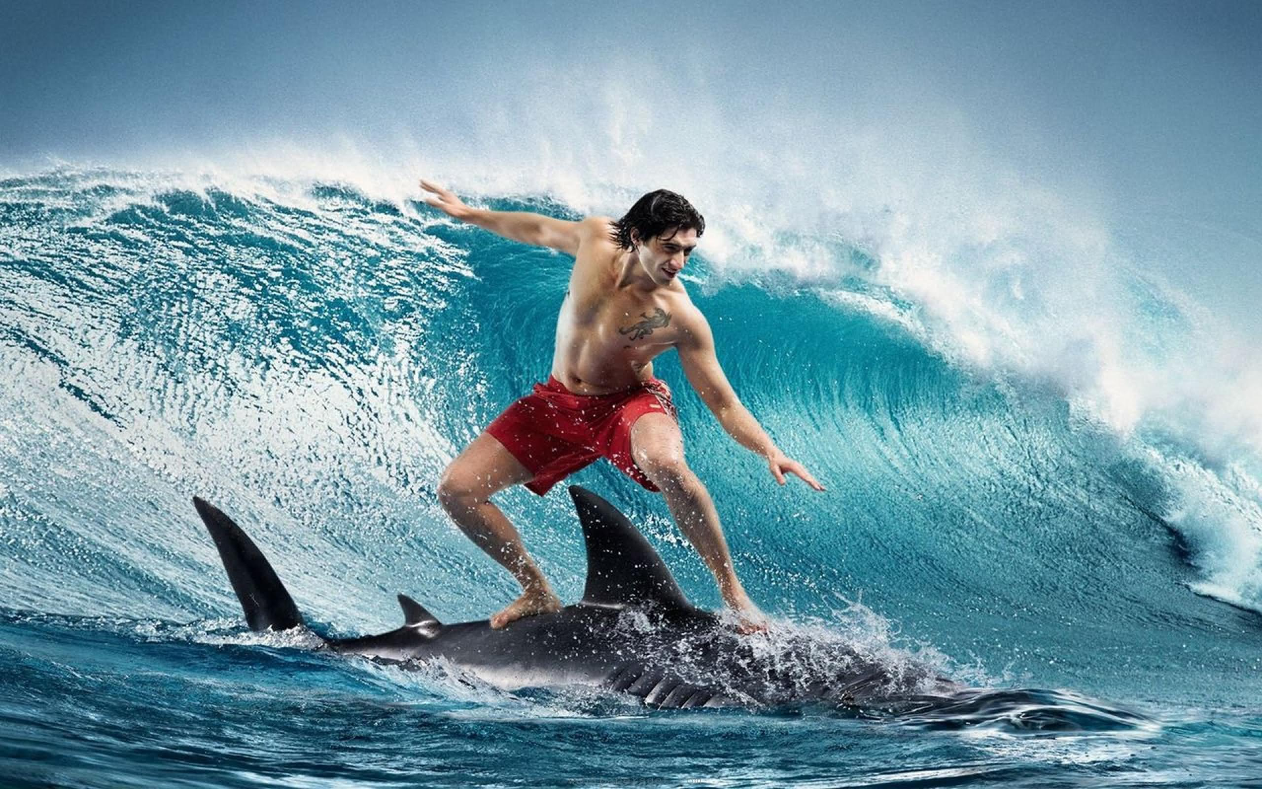 45 Most Funny Surfing Pictures And Photos