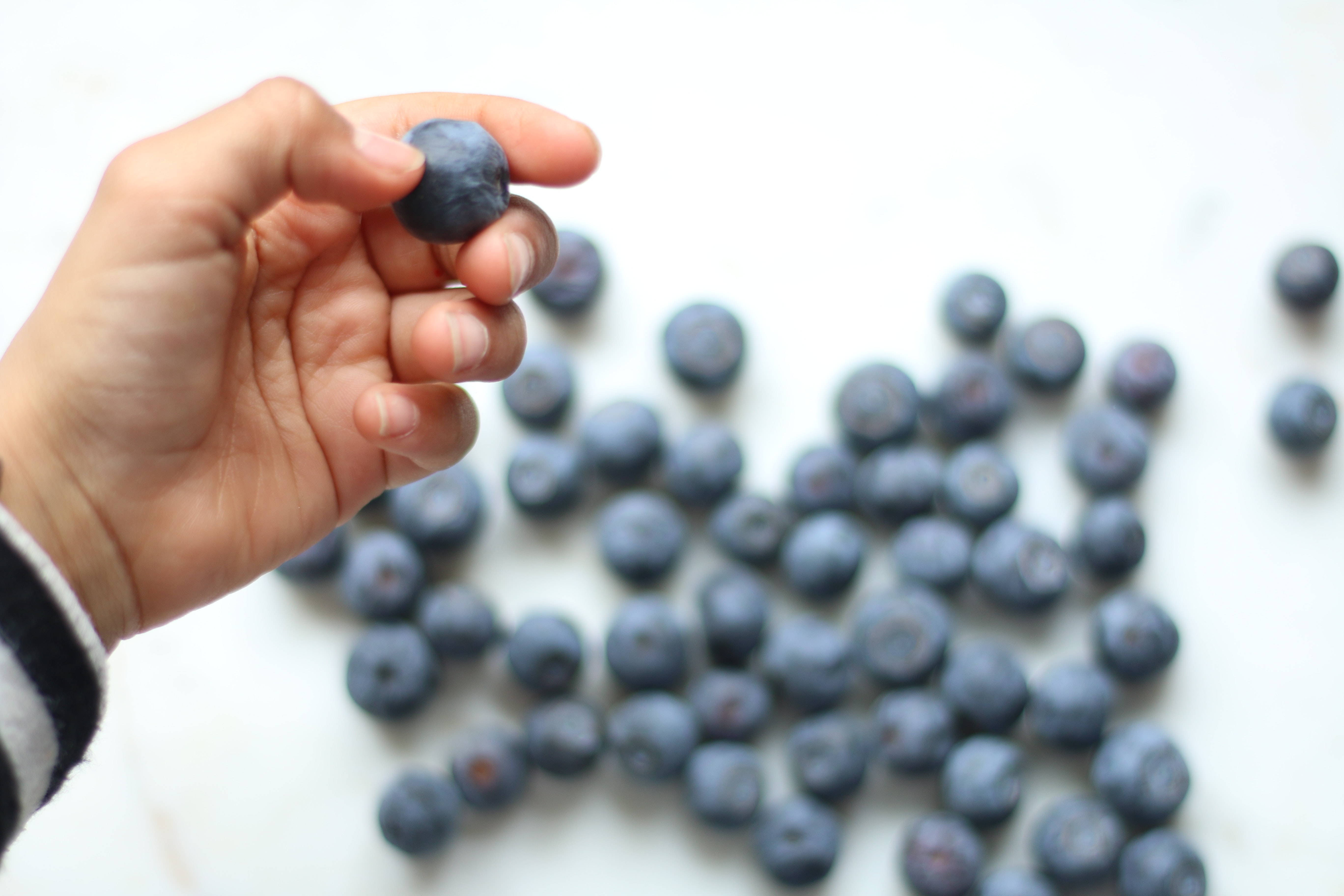 Person holding blueberry photo