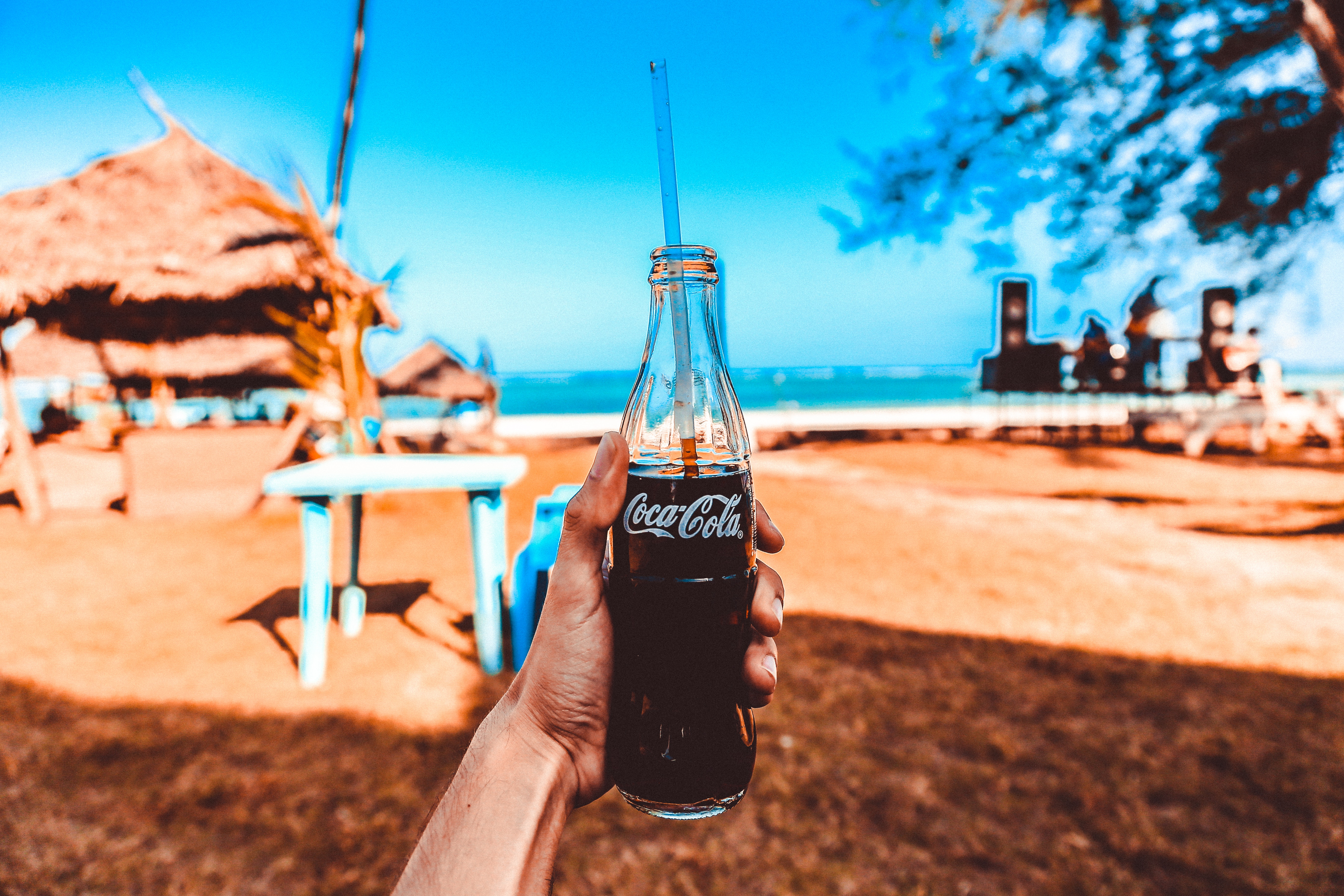 Person Holding Coca-cola Glass Bottle, Beach, Person, Tropical, Trees, HQ Photo