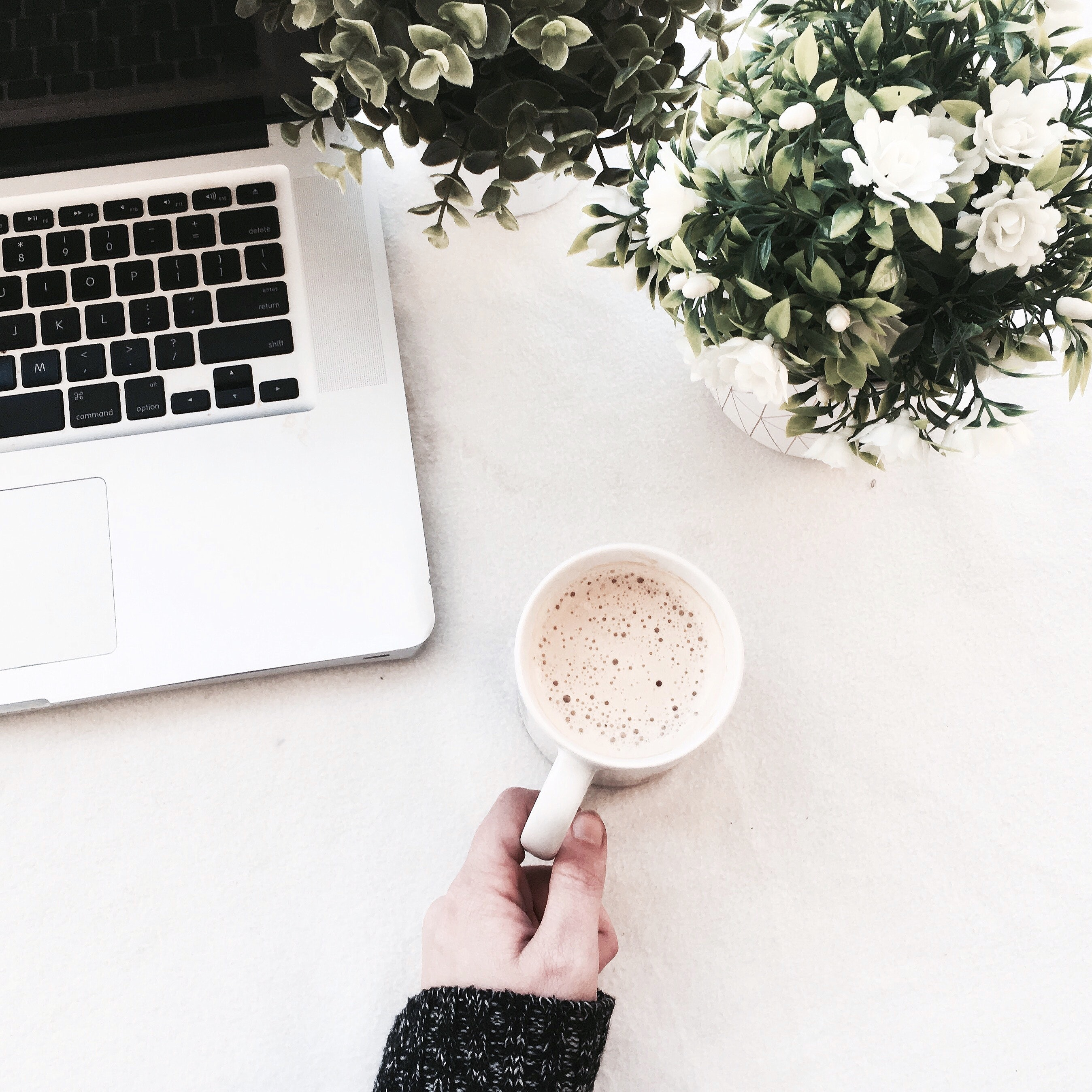 Person Holding Cup of Coffee, Beverage, Flowers, Woman, Table, HQ Photo