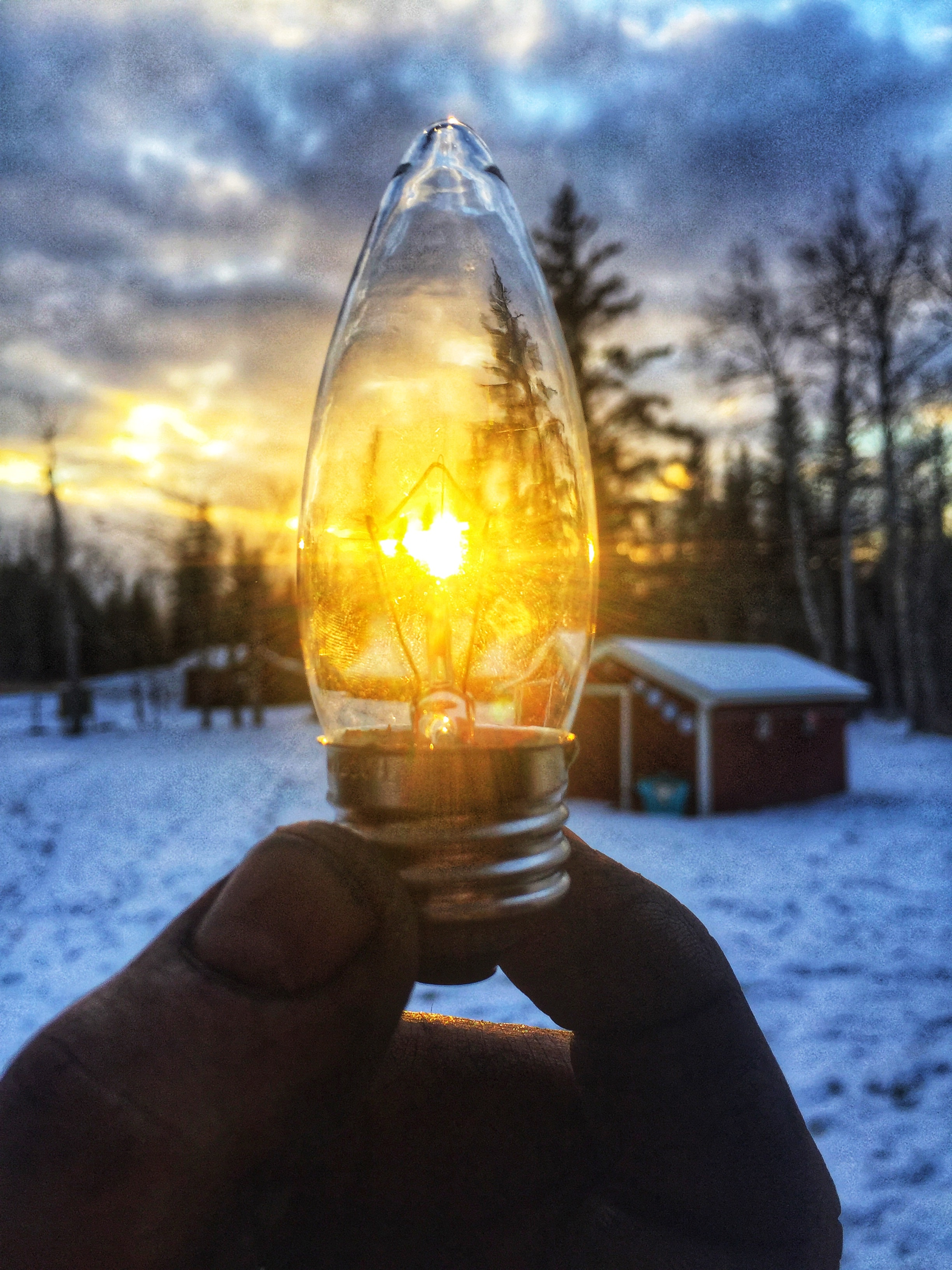Person holding led bulb in front of sunrise photo