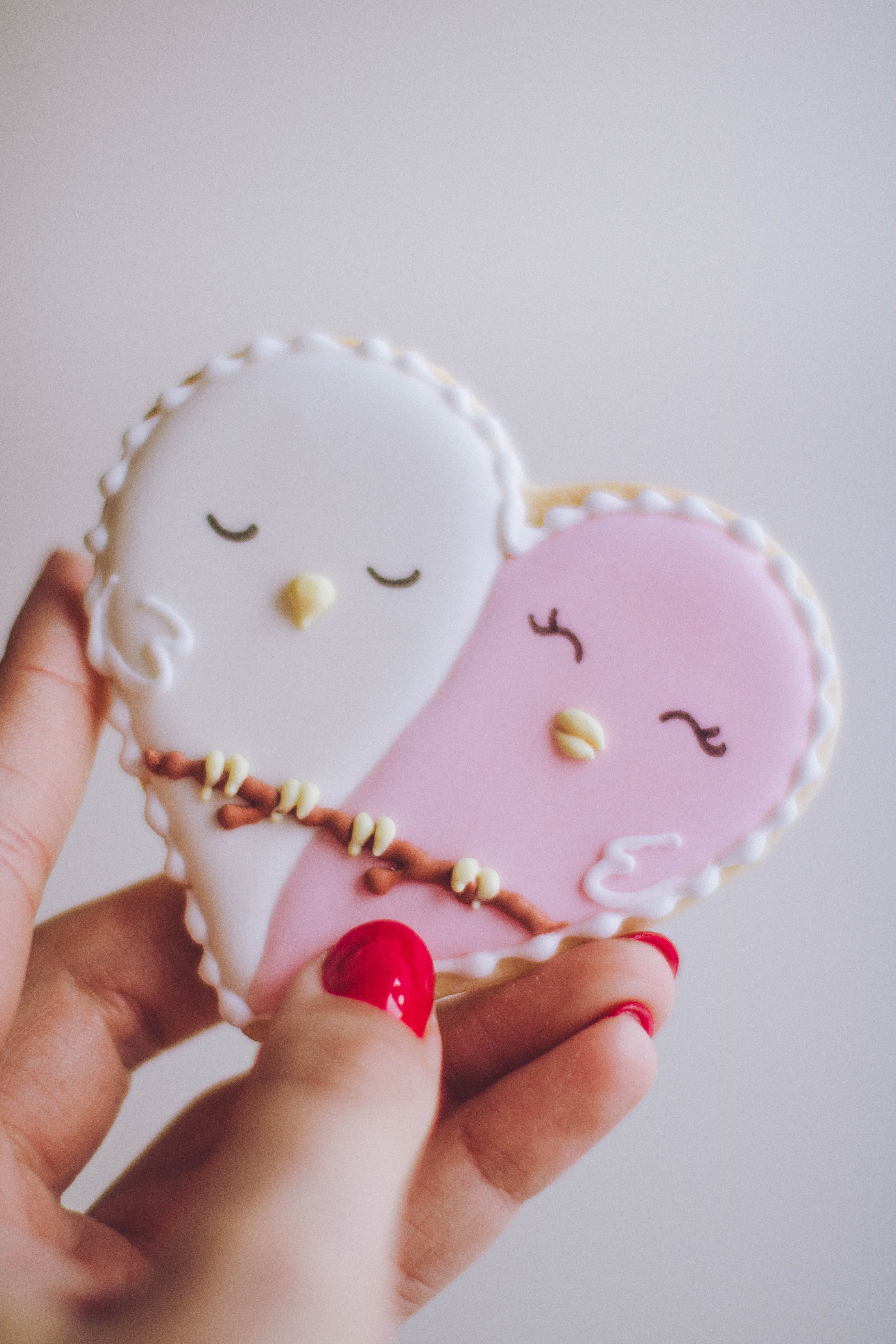 Person holding white and pink birds ornament photo