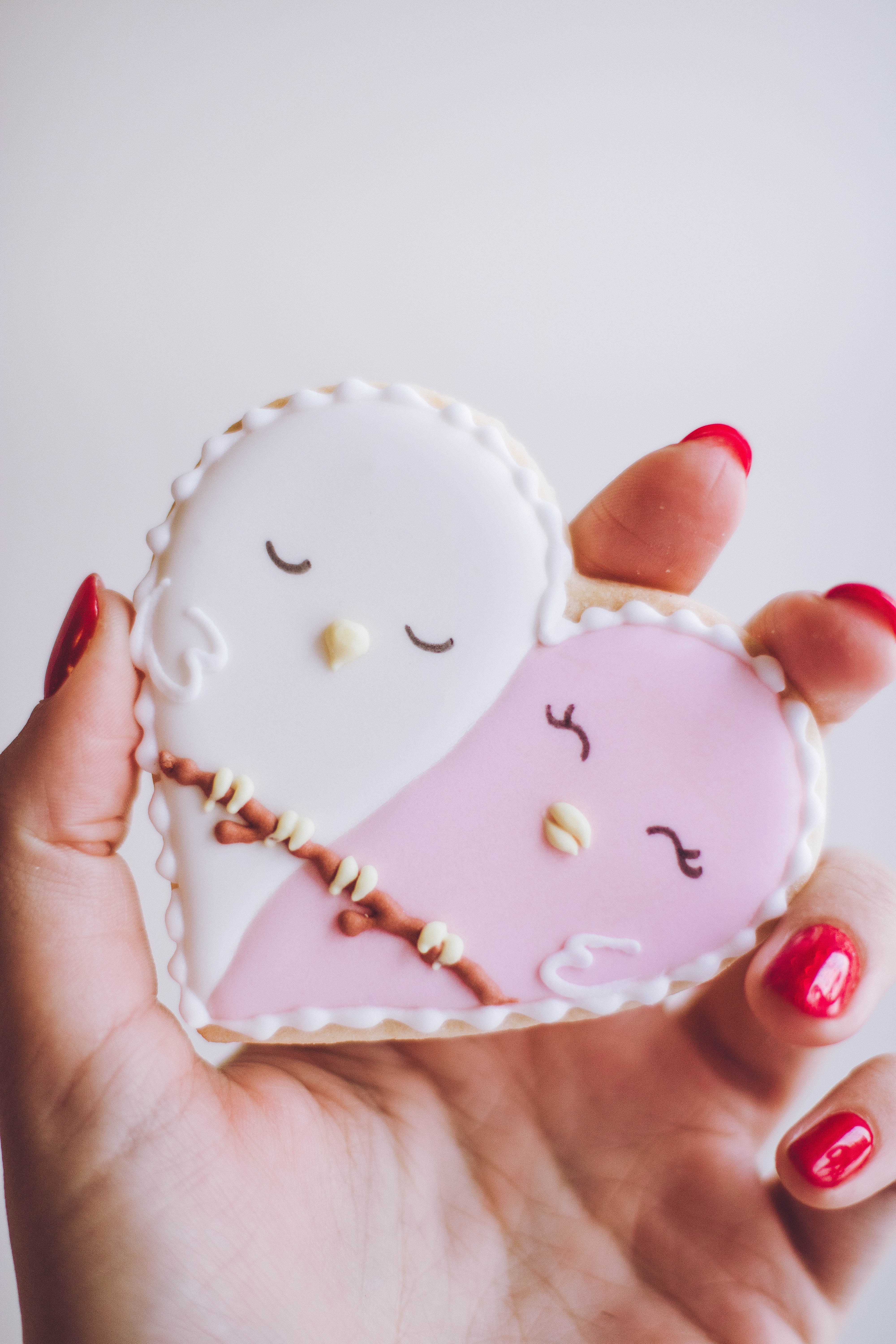 Person holding white and pink heart figure photo
