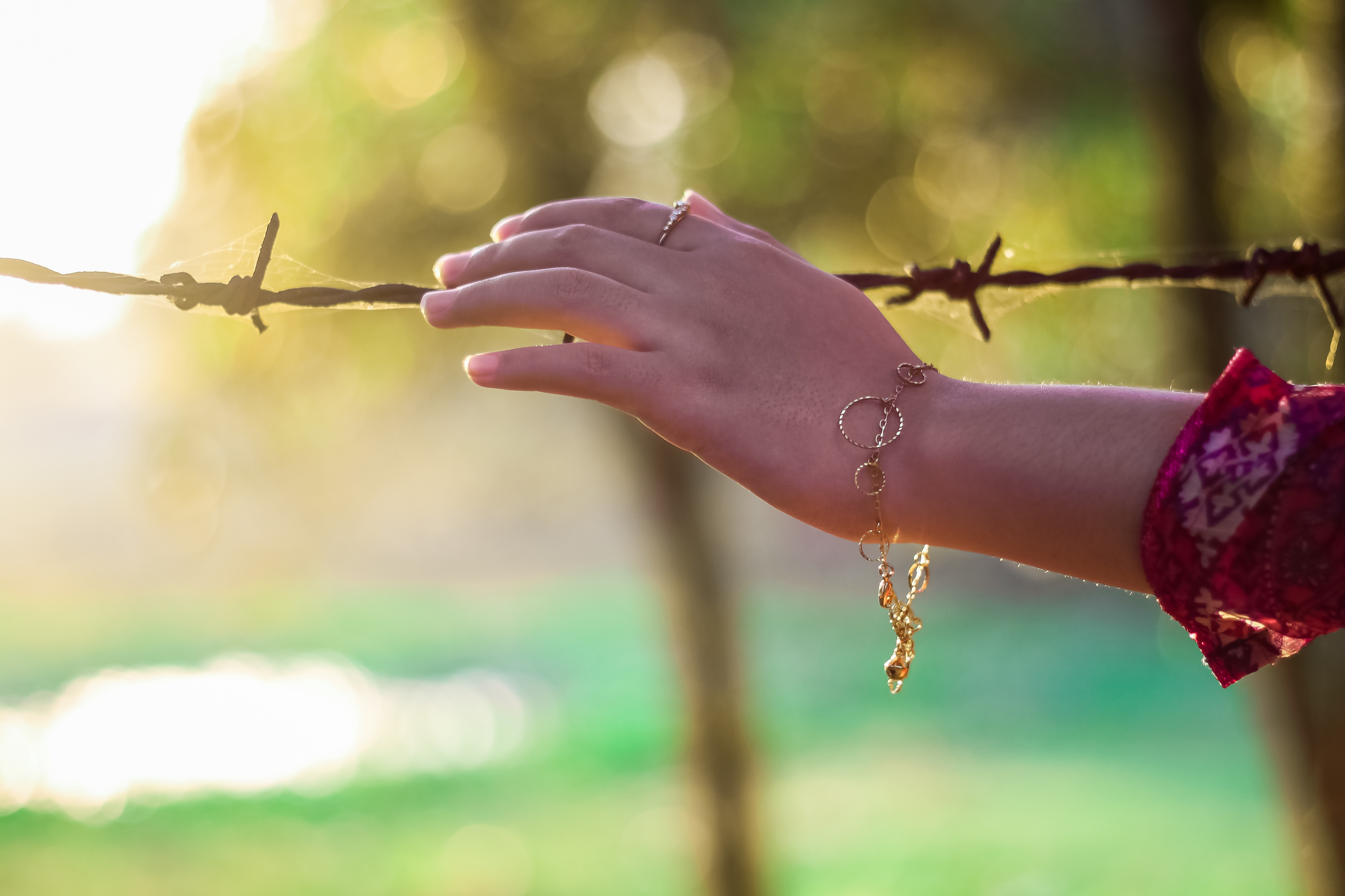 Left Persons Hand Holding a Bulb Wire · Free Stock Photo