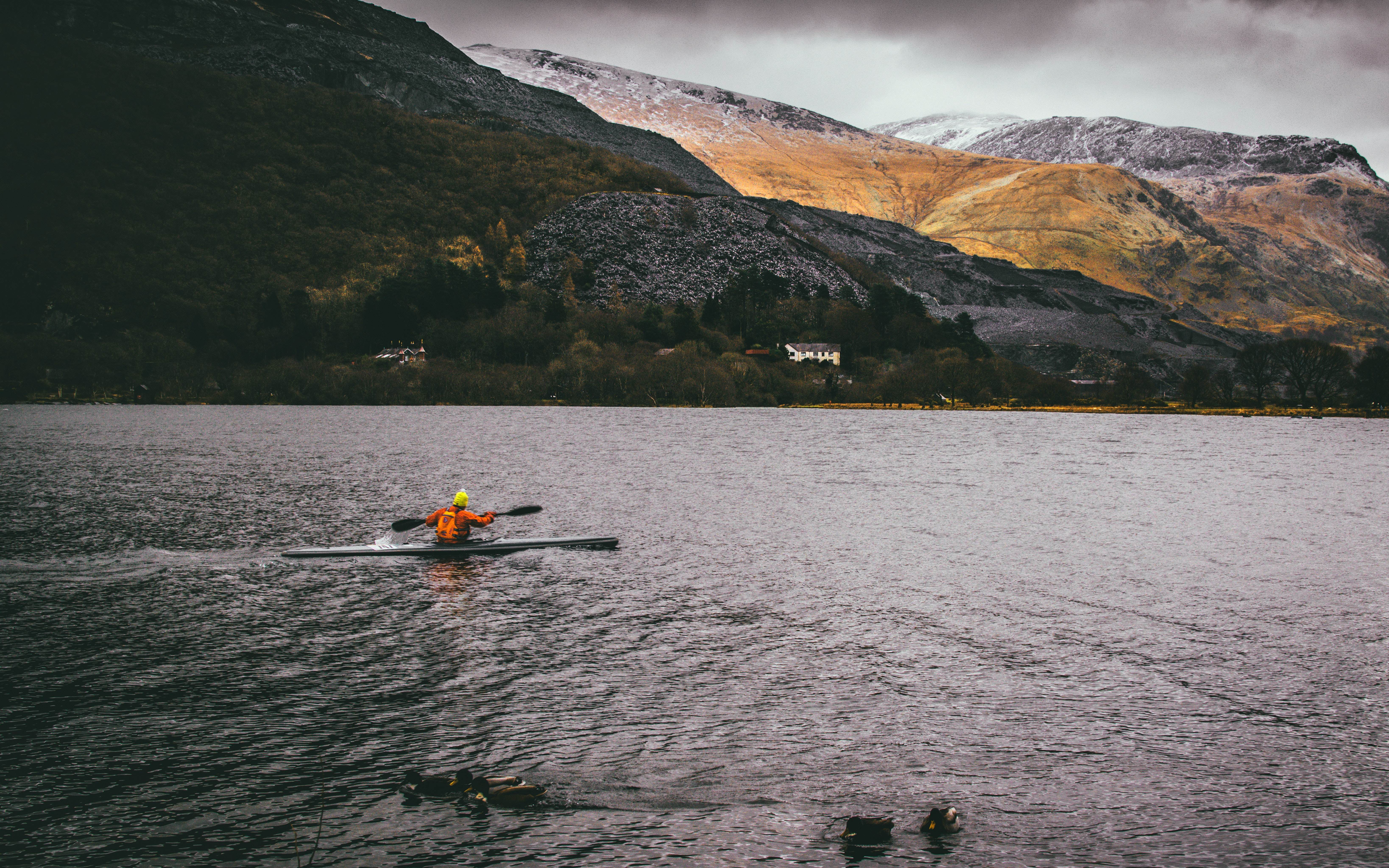 Person Kayaking on Body of Water, Recreation, Sea, Race, Person, HQ Photo