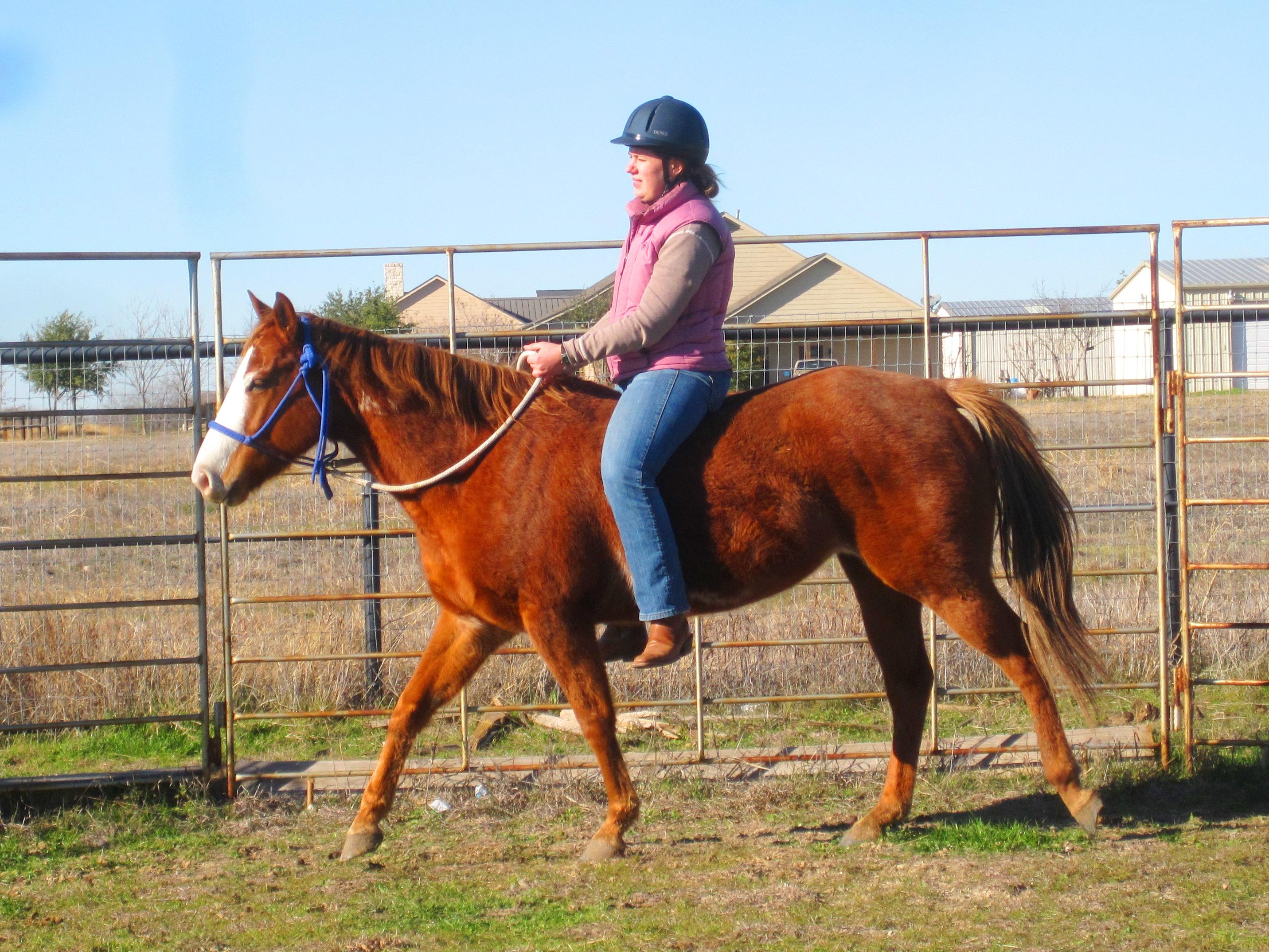 Going Backward with Cheyenne   Stale Cheerios