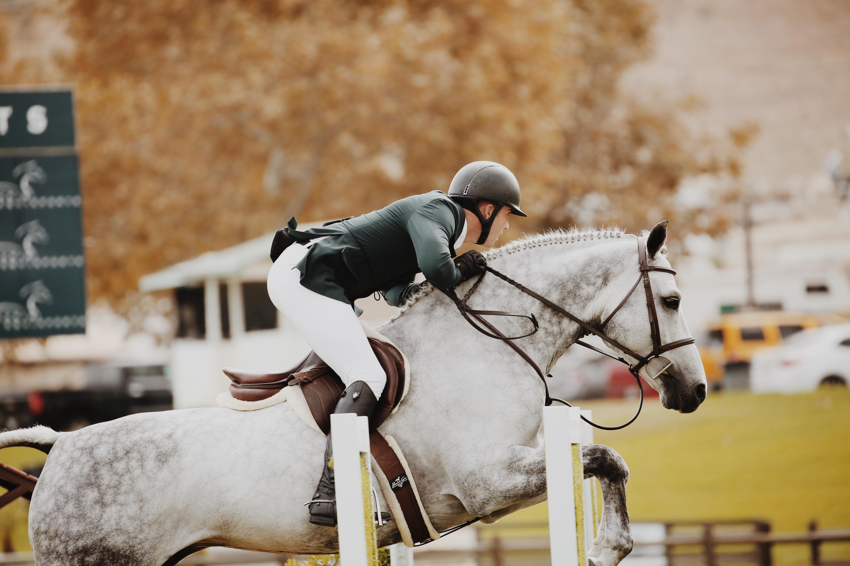 Person riding horse photo
