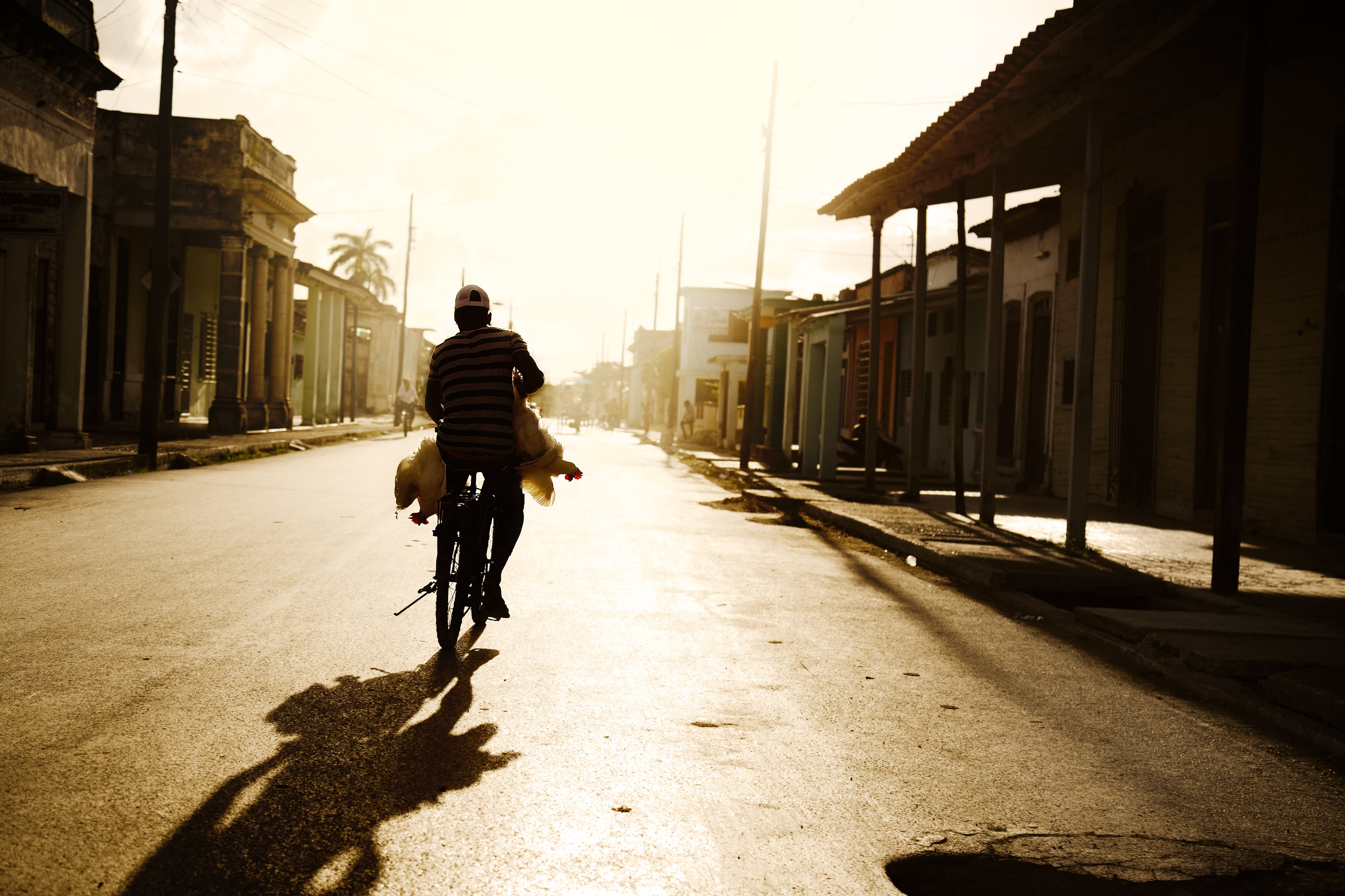 Person Riding on Bike Photo Shot during Daylight, Adult, Road, Urban, Travel, HQ Photo