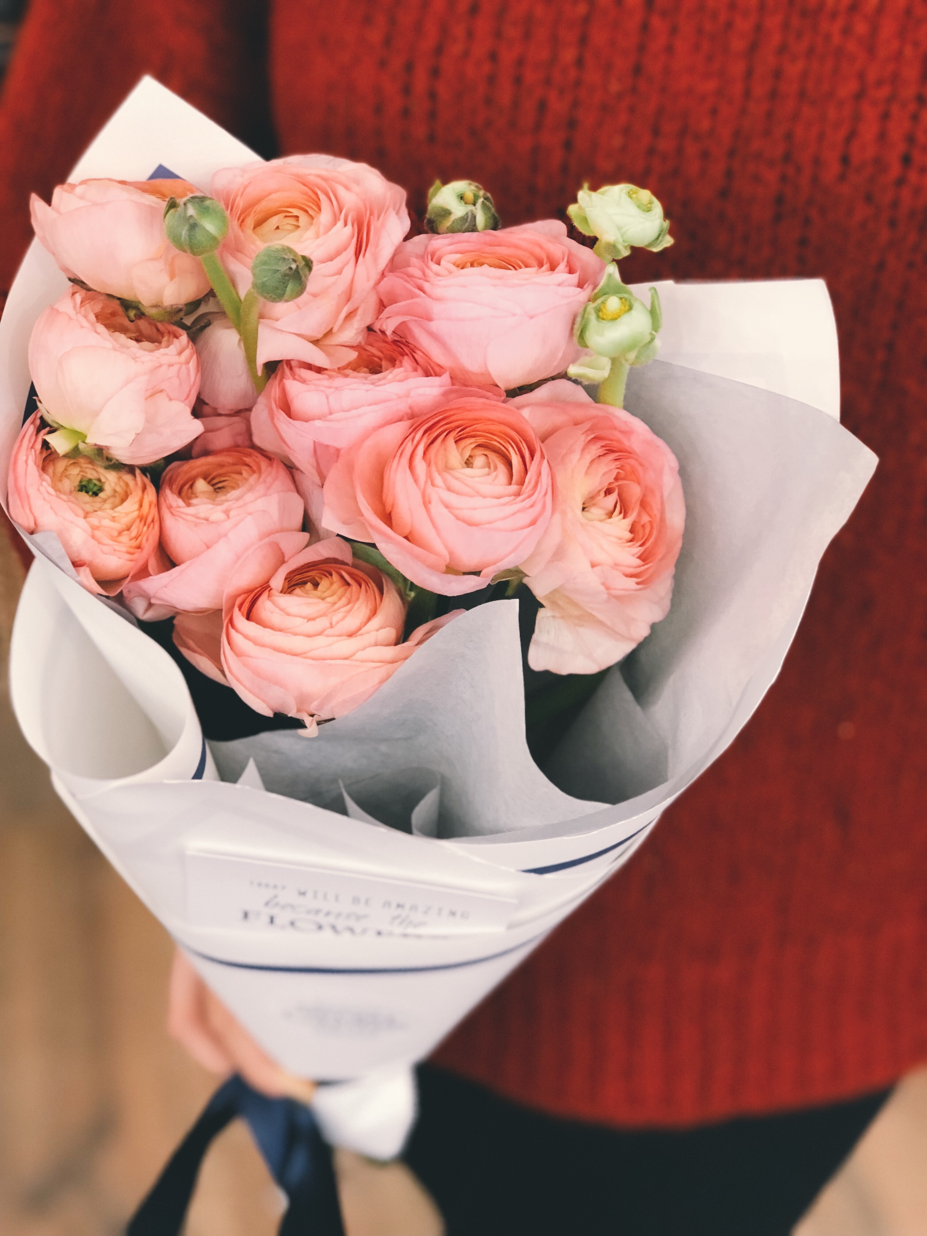 Person wearing red sweater and black pants holding bouquet of pink flowers photo