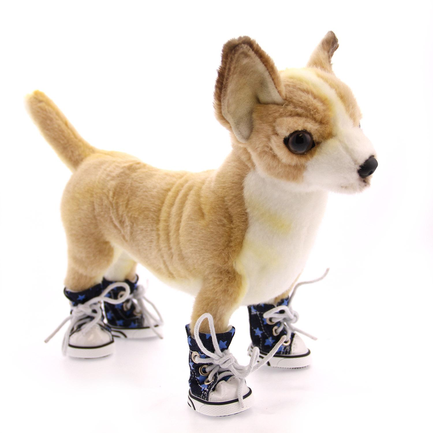 Converse Dog Shoes by Parisian Pet - Denim Stars with Same Day ...