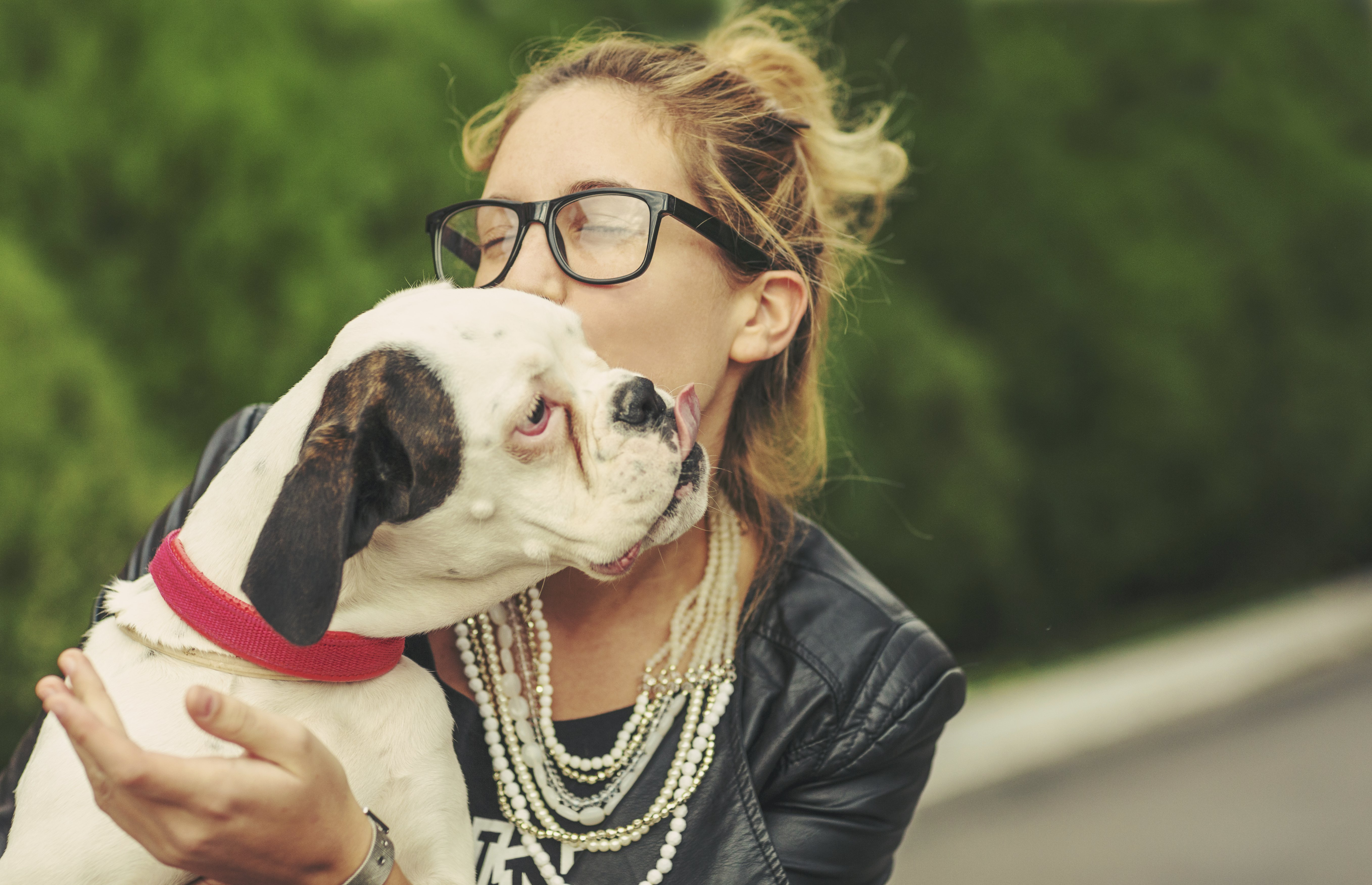 Top 100 Male and Female Dog Names of 2016   Rover.com