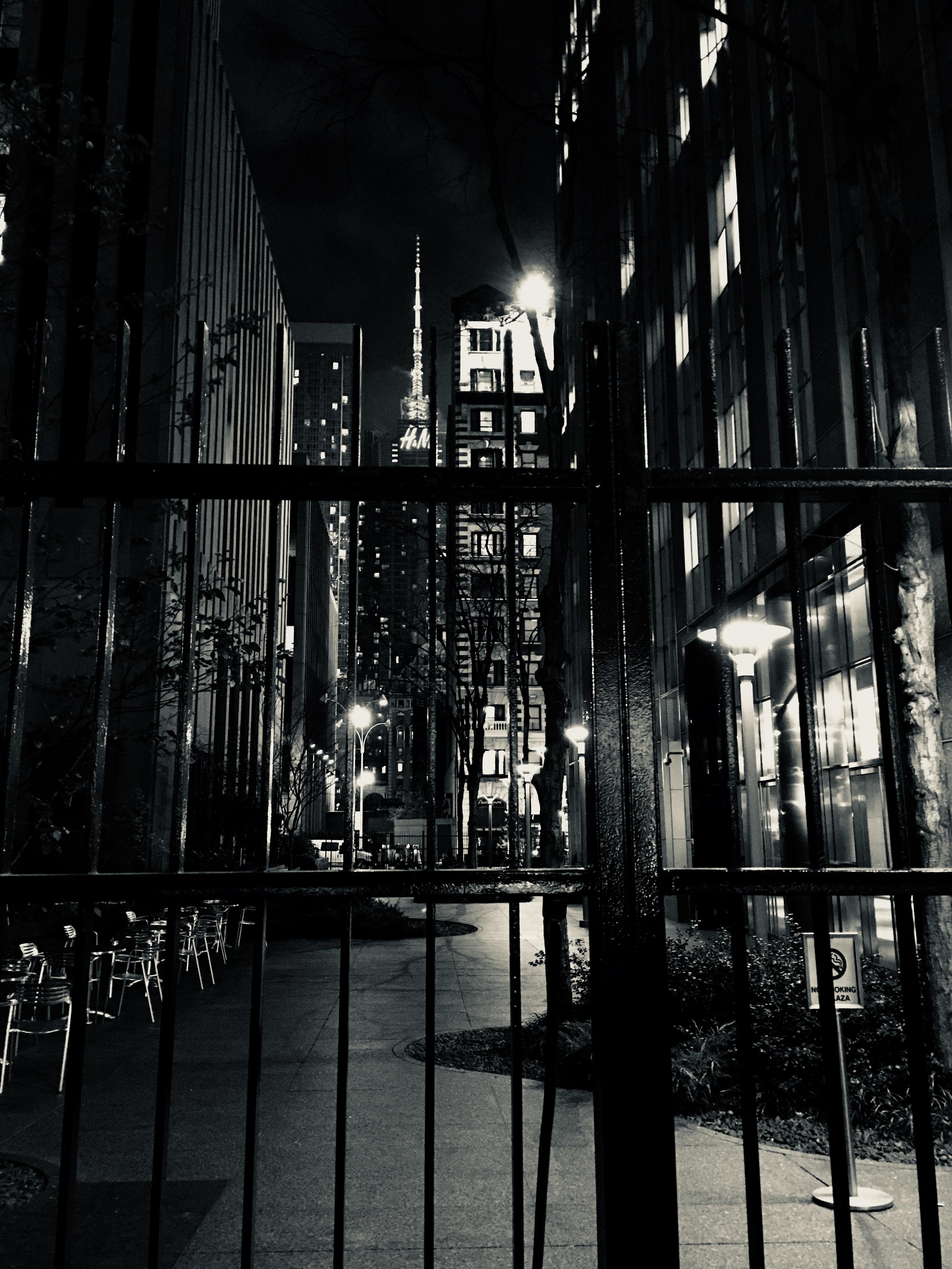 Photo of black steel house gate