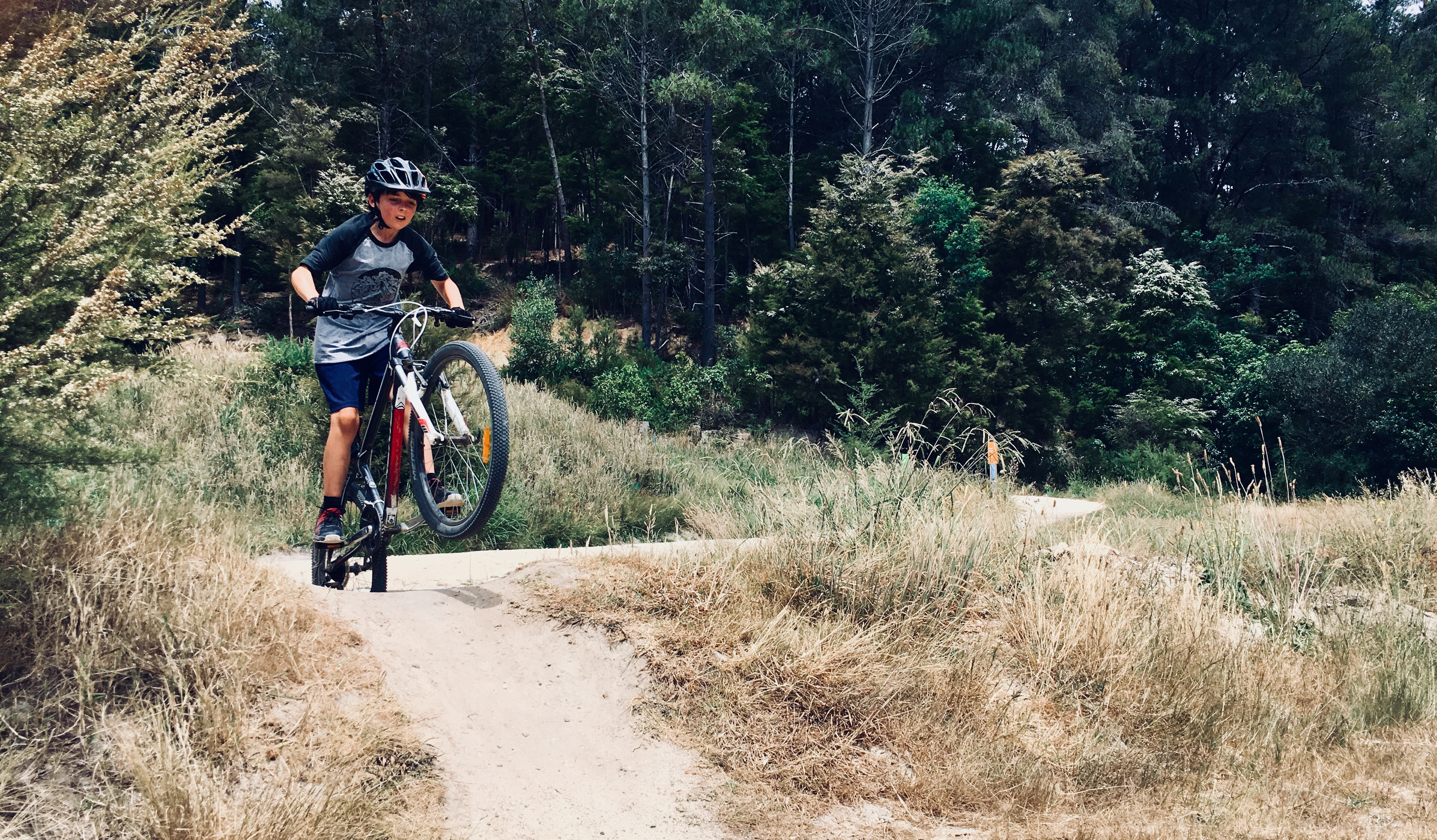Photo of Boy Riding a Bike, Action, Grass, Wear, Trees, HQ Photo