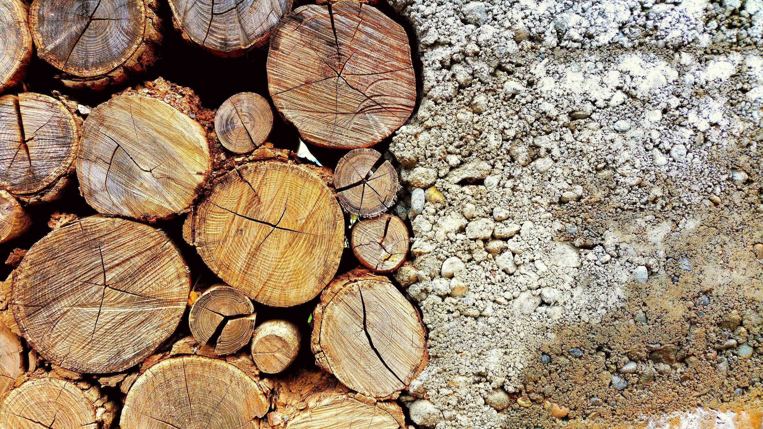 Photo of Brown Log and White Pebbles, Tree trunks, Tree log, Timber, Surface, HQ Photo