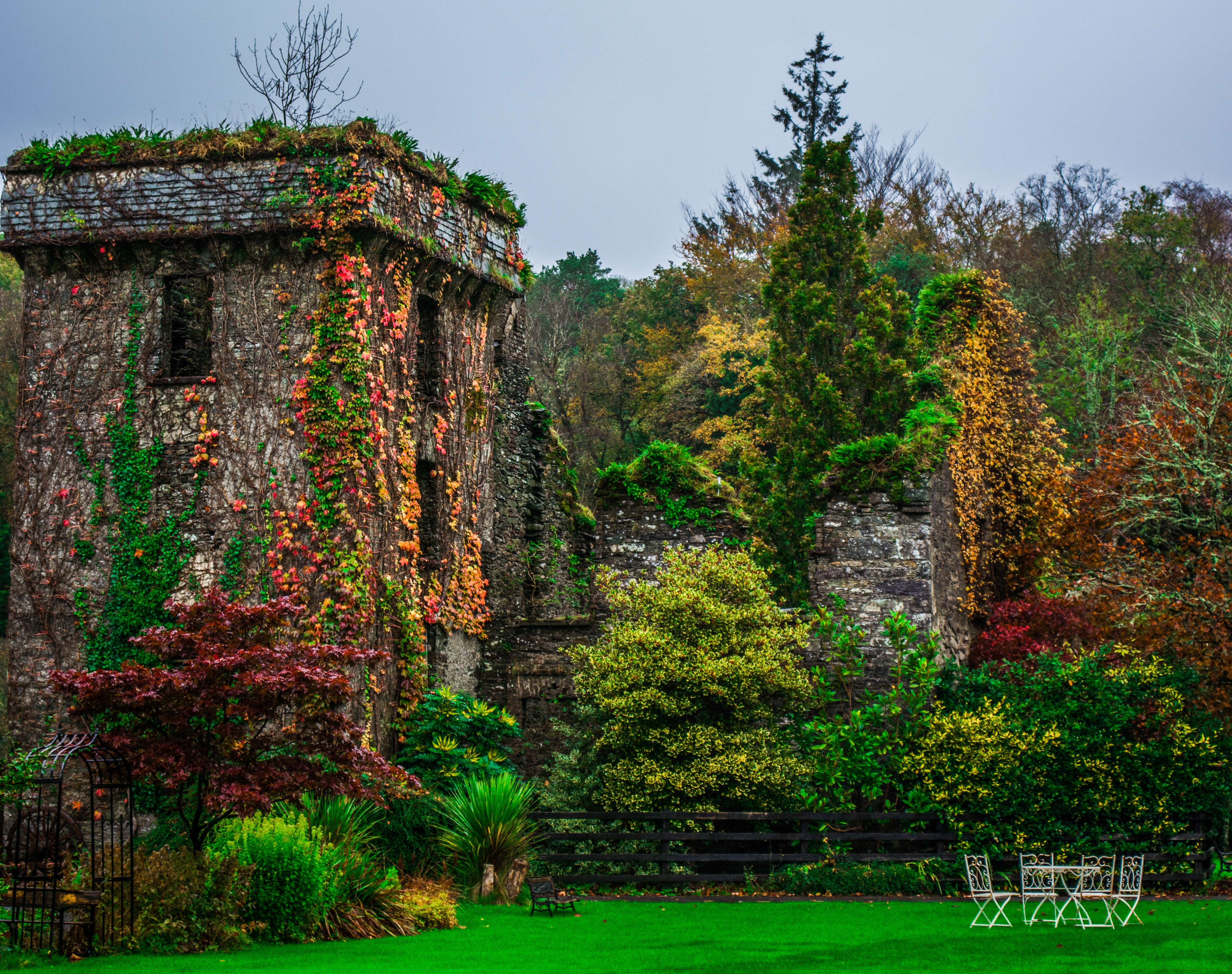 Photo of Forest, Architecture, Lawn, Wall, Trees, HQ Photo