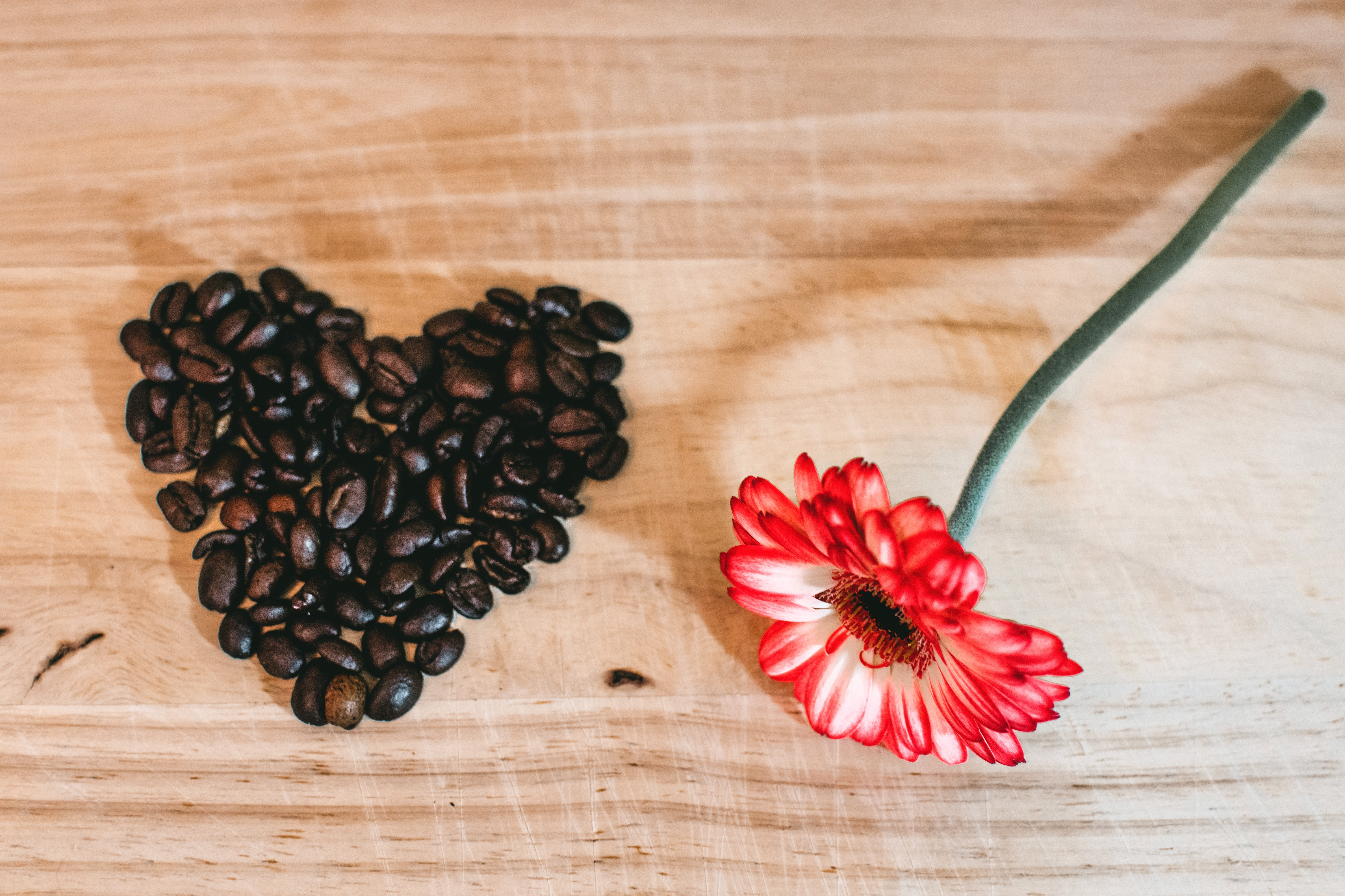Photo of Red Petaled Flower Near Coffee Beans, Aromatic, Heart, Texture, Table, HQ Photo