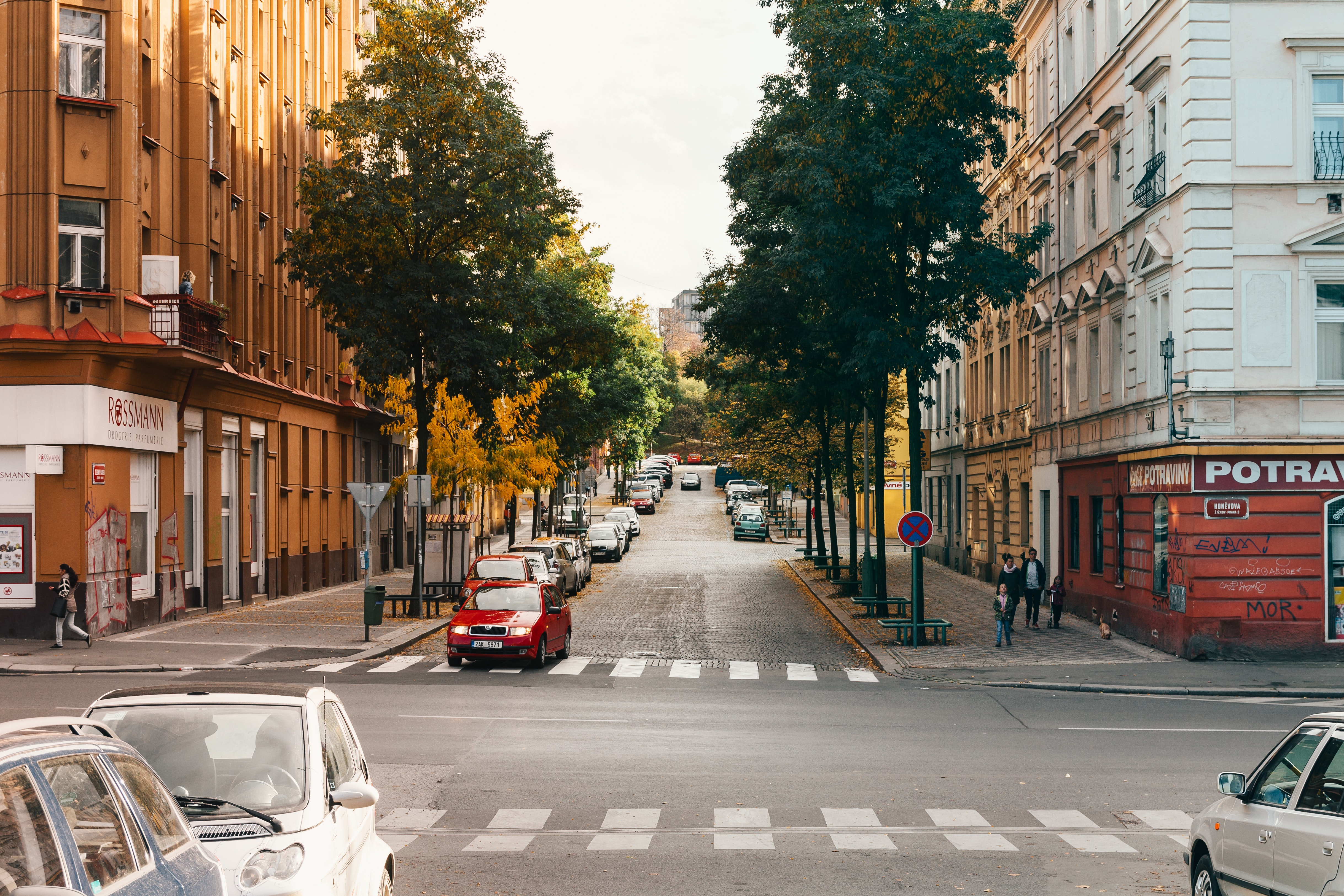 Photo of Roadway Cross Between Buildings, Intersection, Vehicles, Urban, Trees, HQ Photo