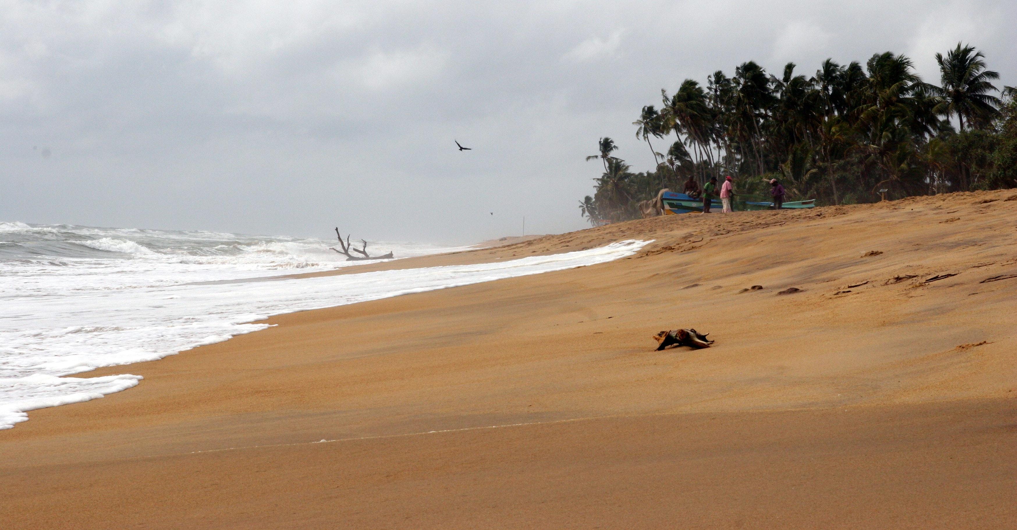 Photo of Seashore, Beach, Seascape, Water, Vacation, HQ Photo
