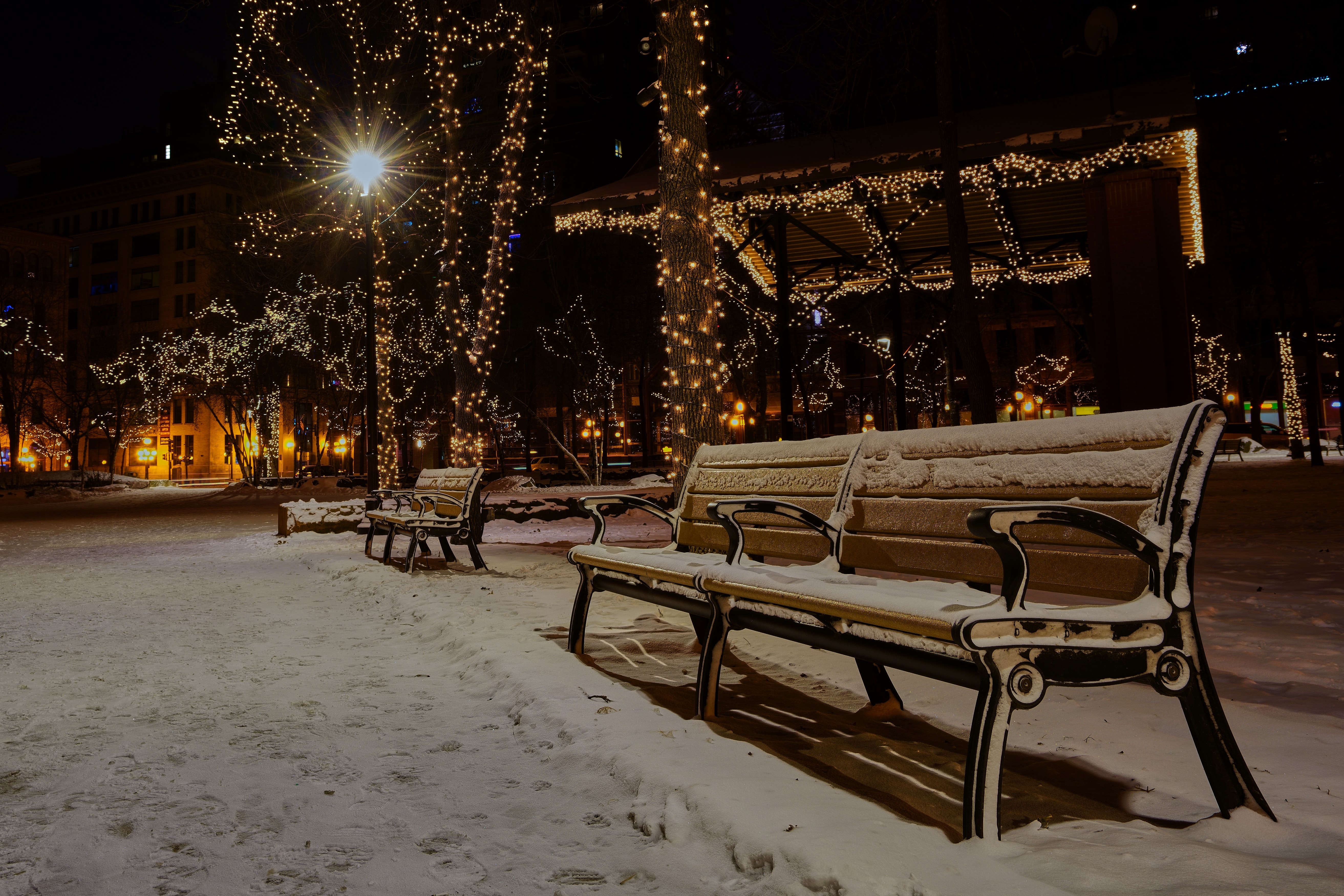 Photo of Snow Covered Benches in the Park, Road, Wood, Winter, Urban, HQ Photo