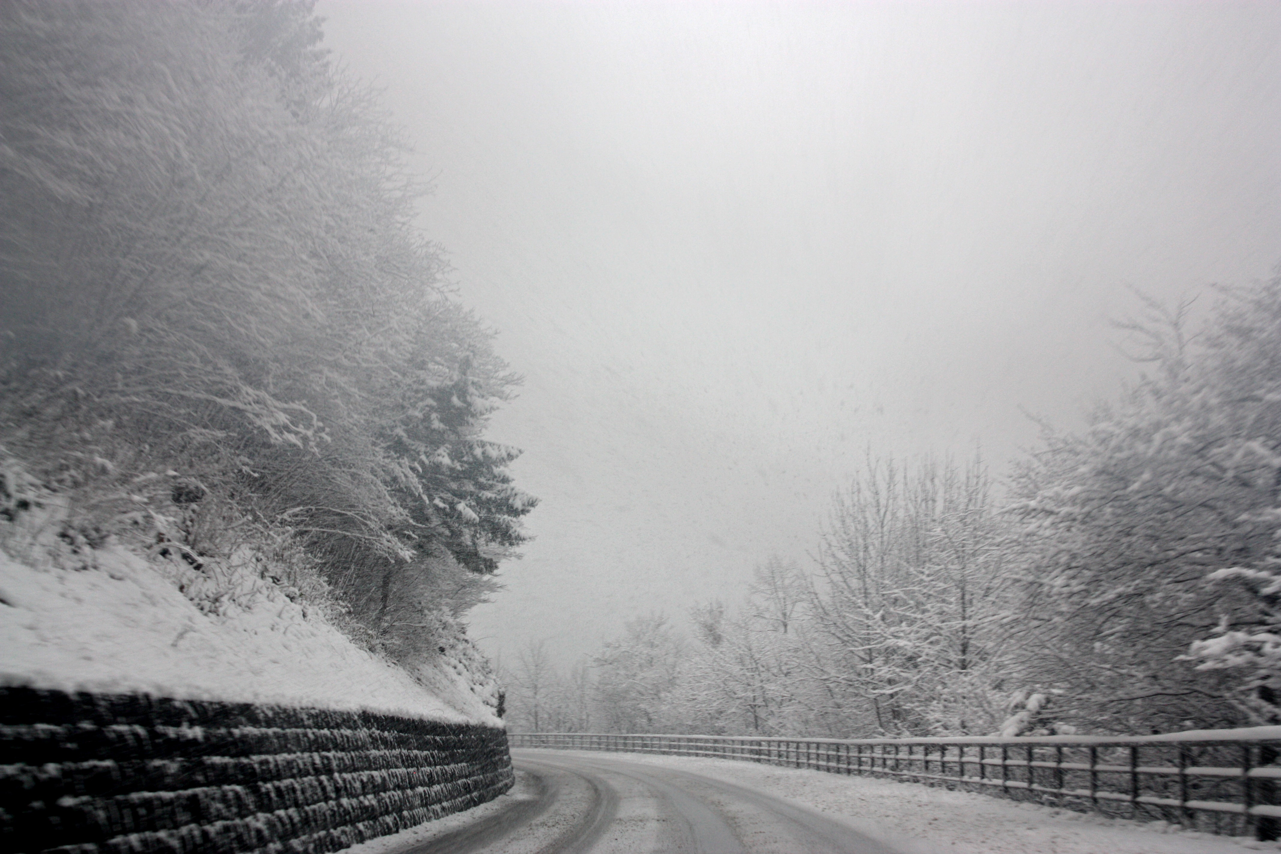 Photo of Snowy Road, Black-and-white, Misty, Winter, Trees, HQ Photo
