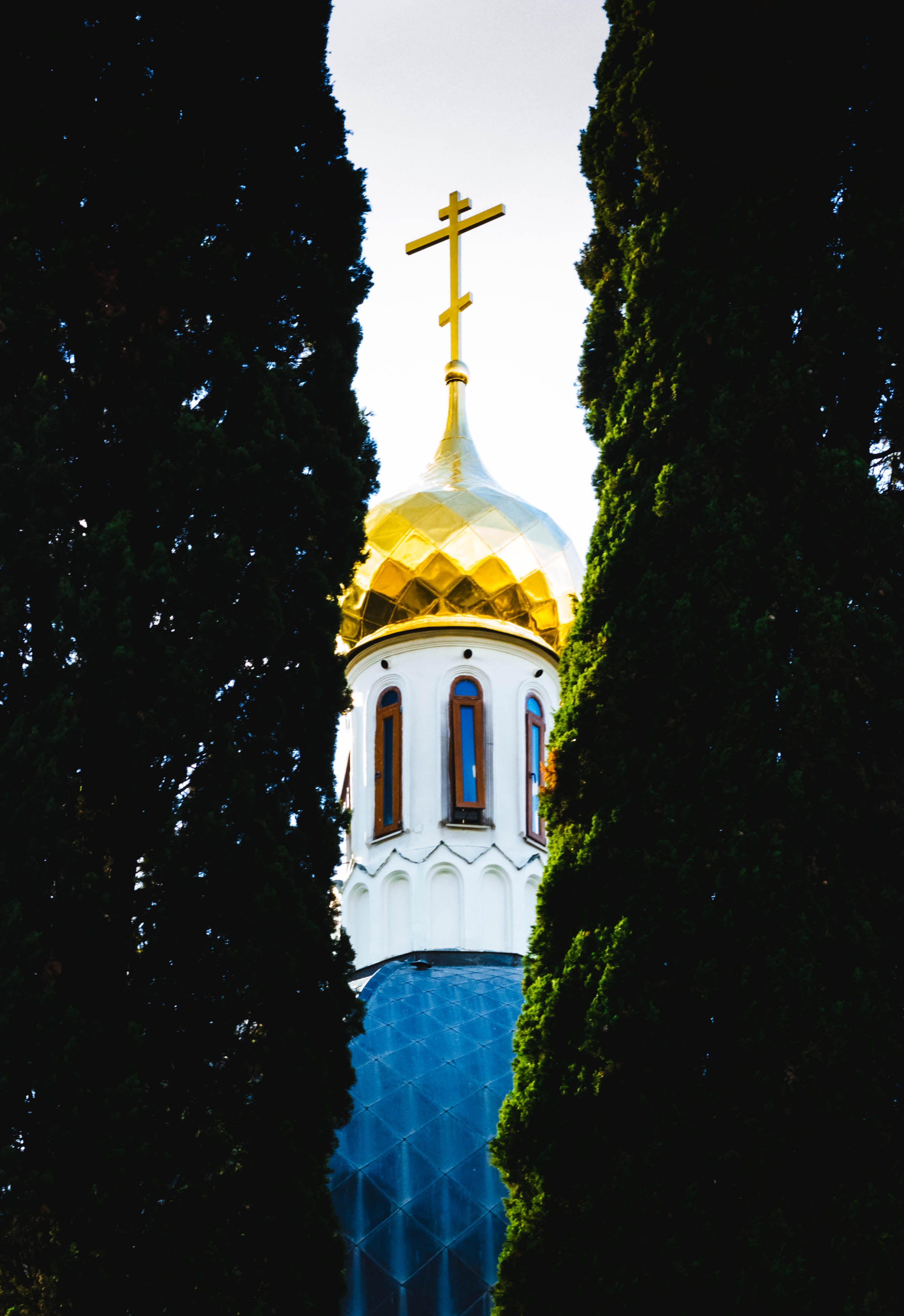 Photo of the church between two plants