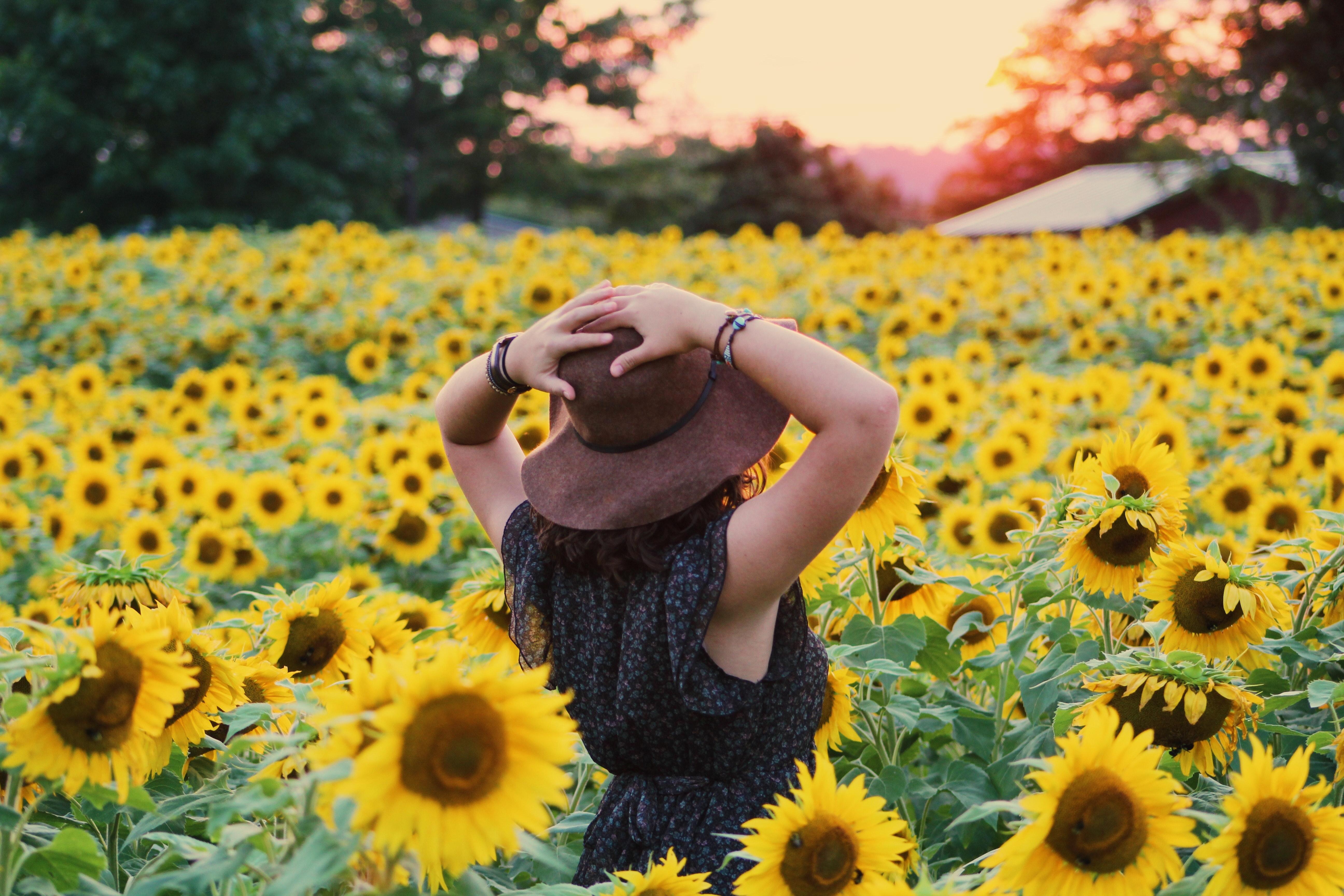 Photo of woman in black dress standing on sunflower field