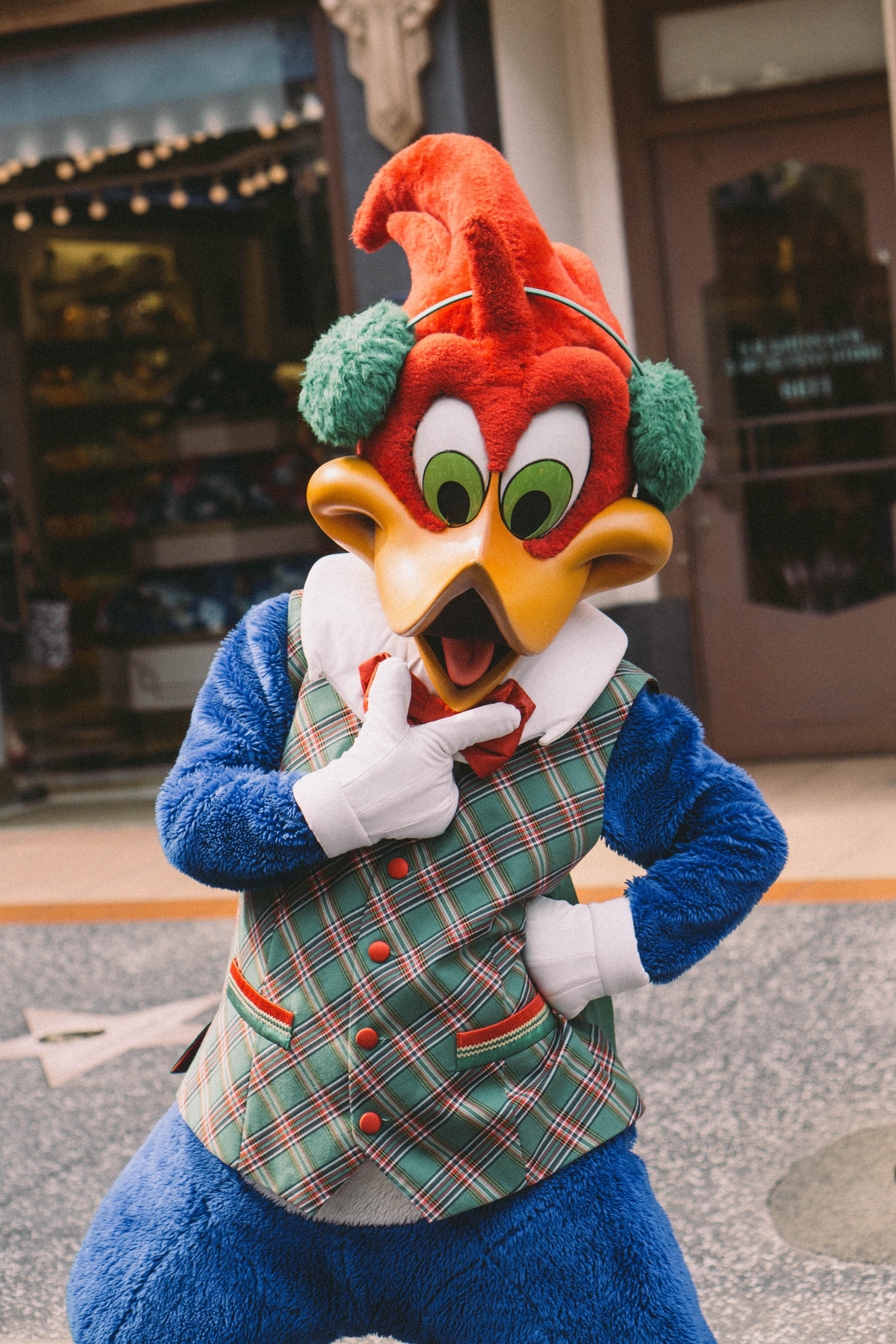 Photo of woody woodpecker mascot