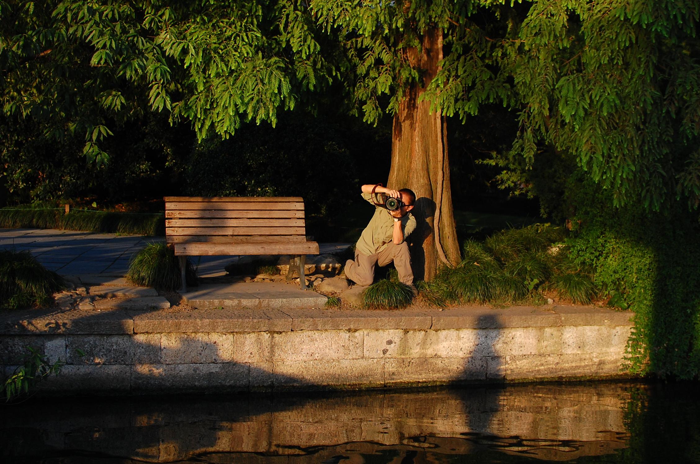 Photographer under a tree