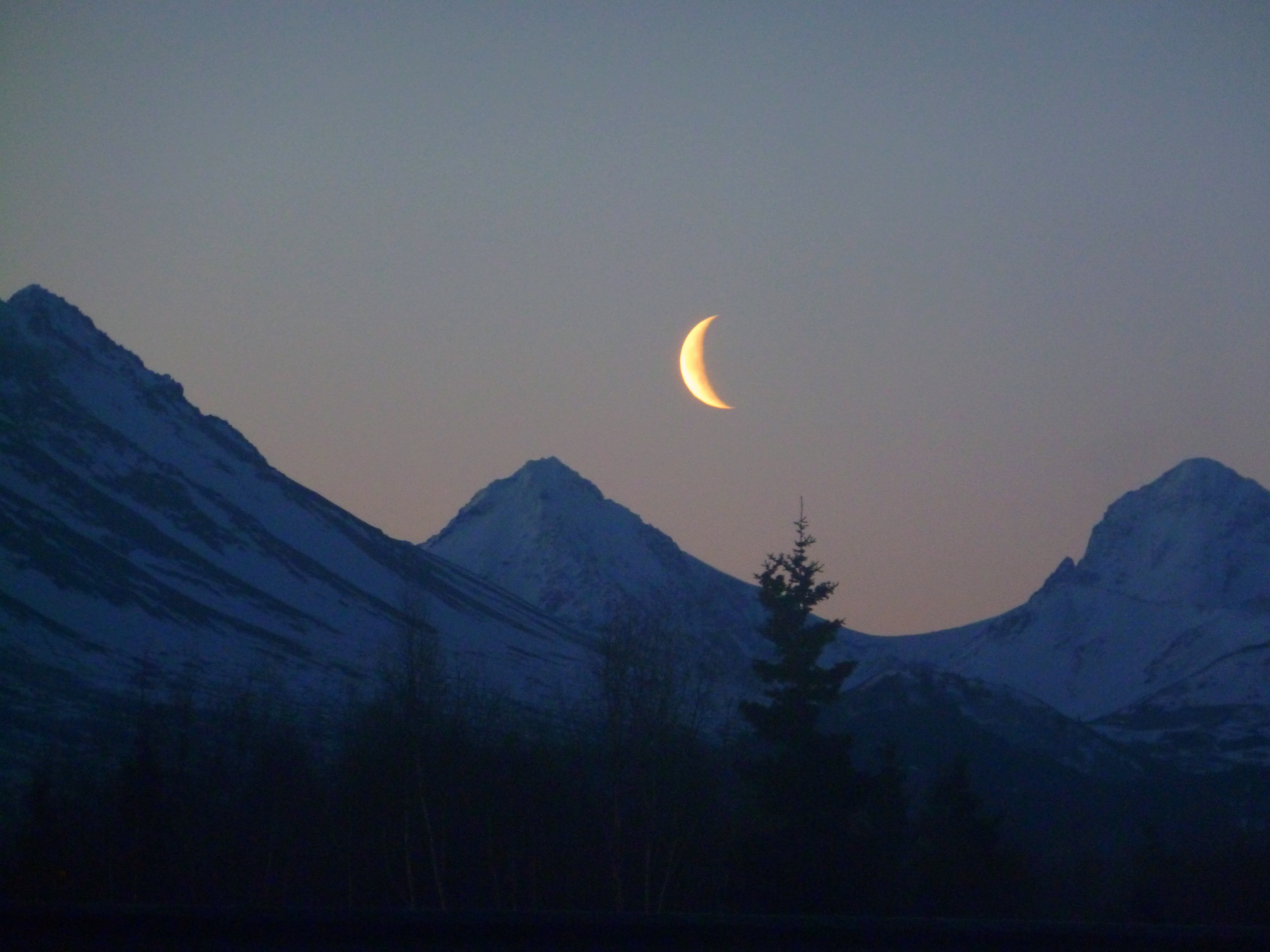 Crescent Moon | At Home in Alaska
