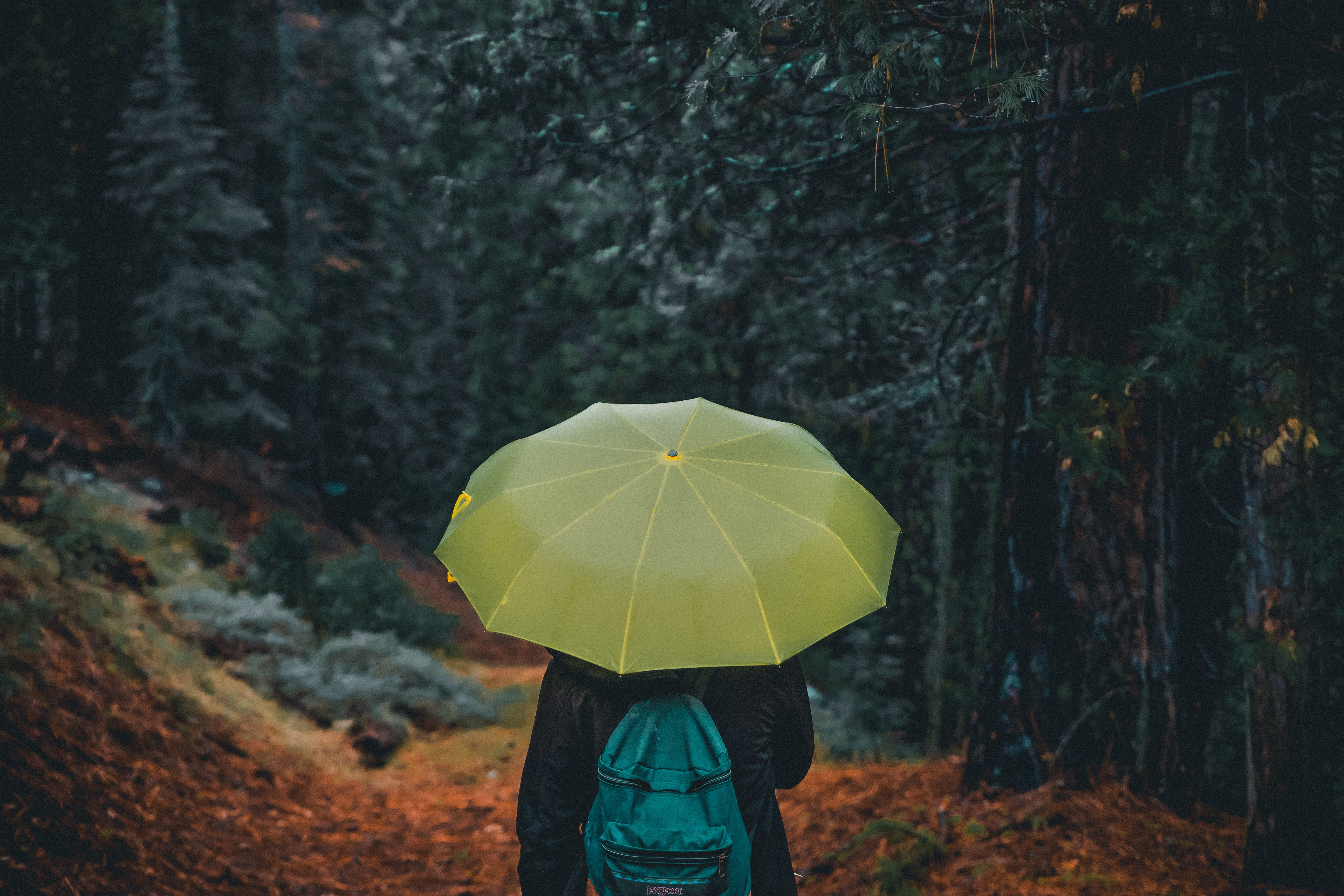Photography of a person holding yellow umbrella
