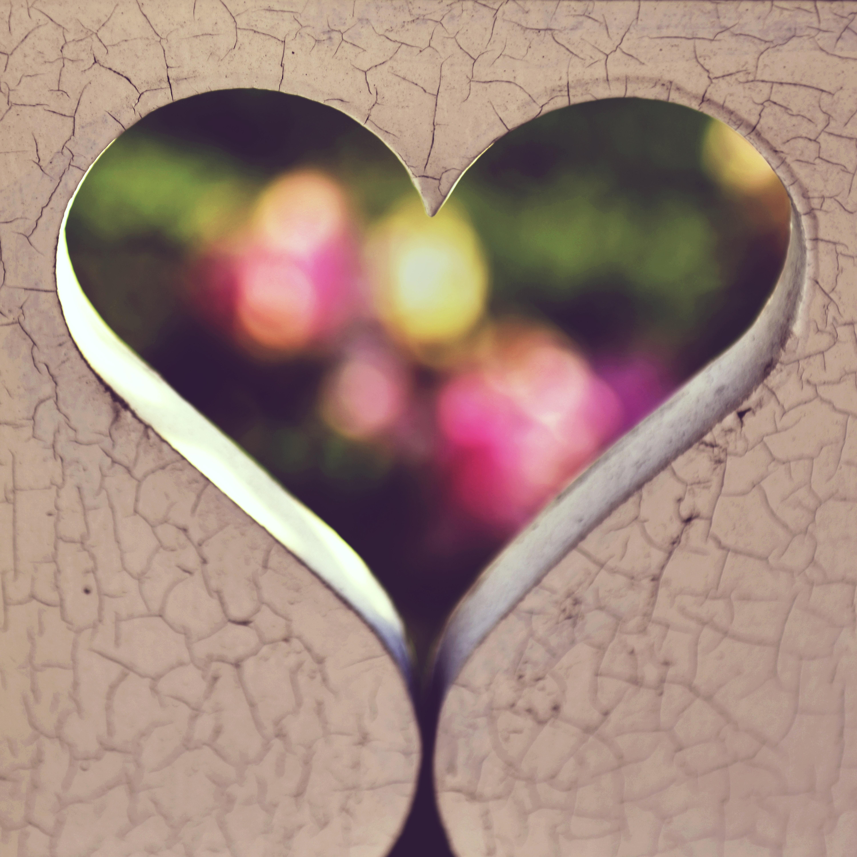Photography of heart digital wallpaper