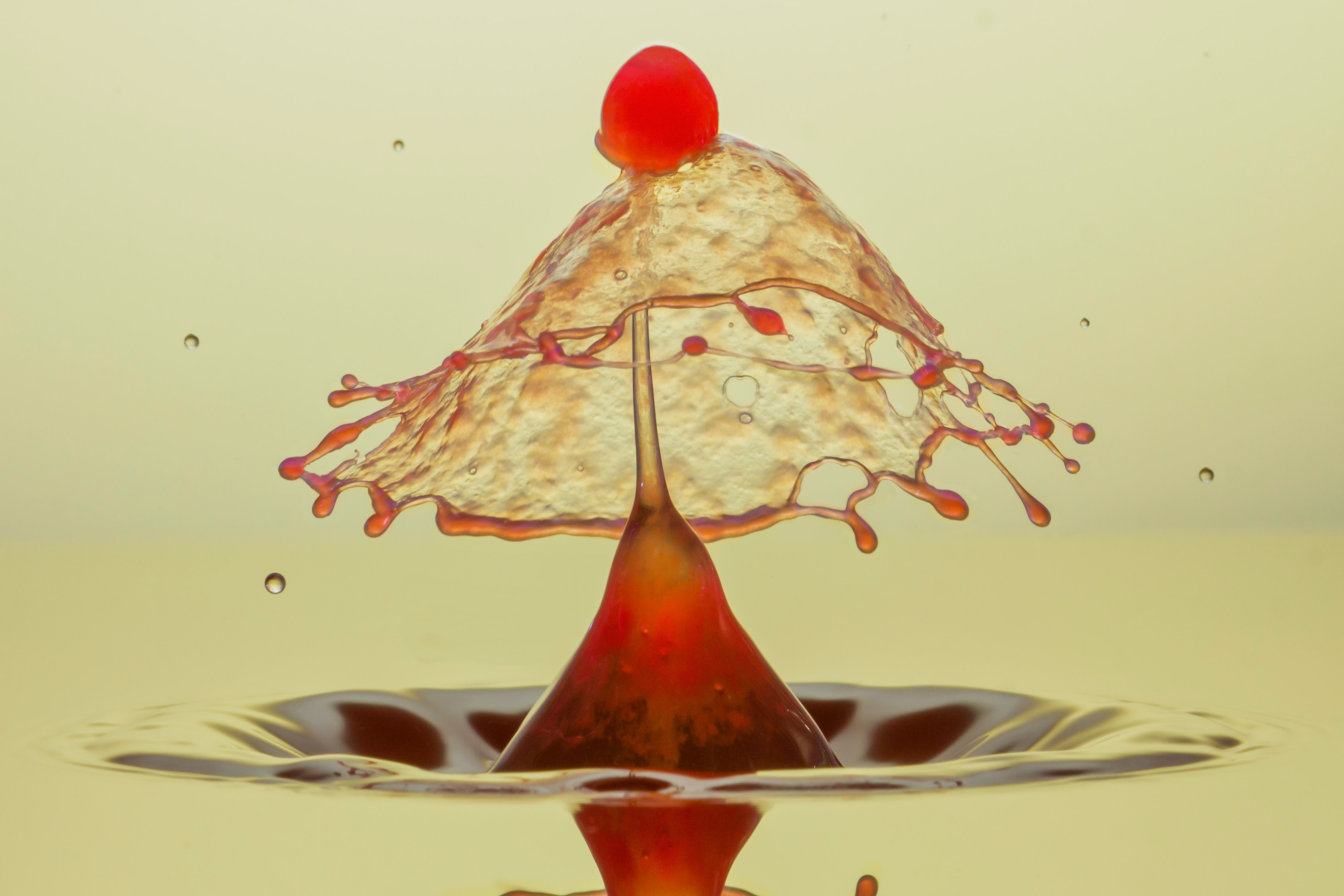 Photography of red liquid
